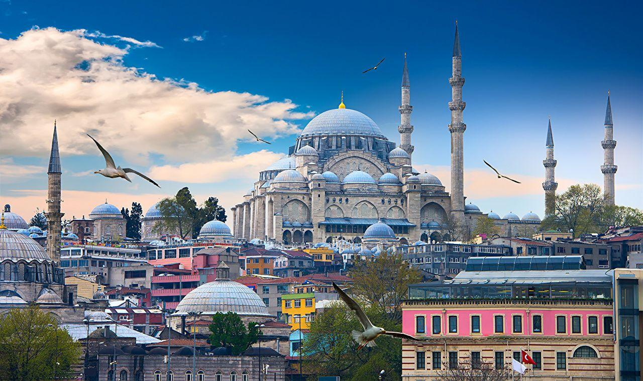 Wallpapers Istanbul Birds Mosque Turkey Temples Cities Clouds