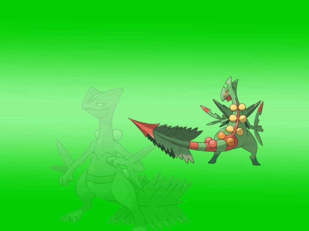 Mega Sceptile Wallpapers by DerpGuy203