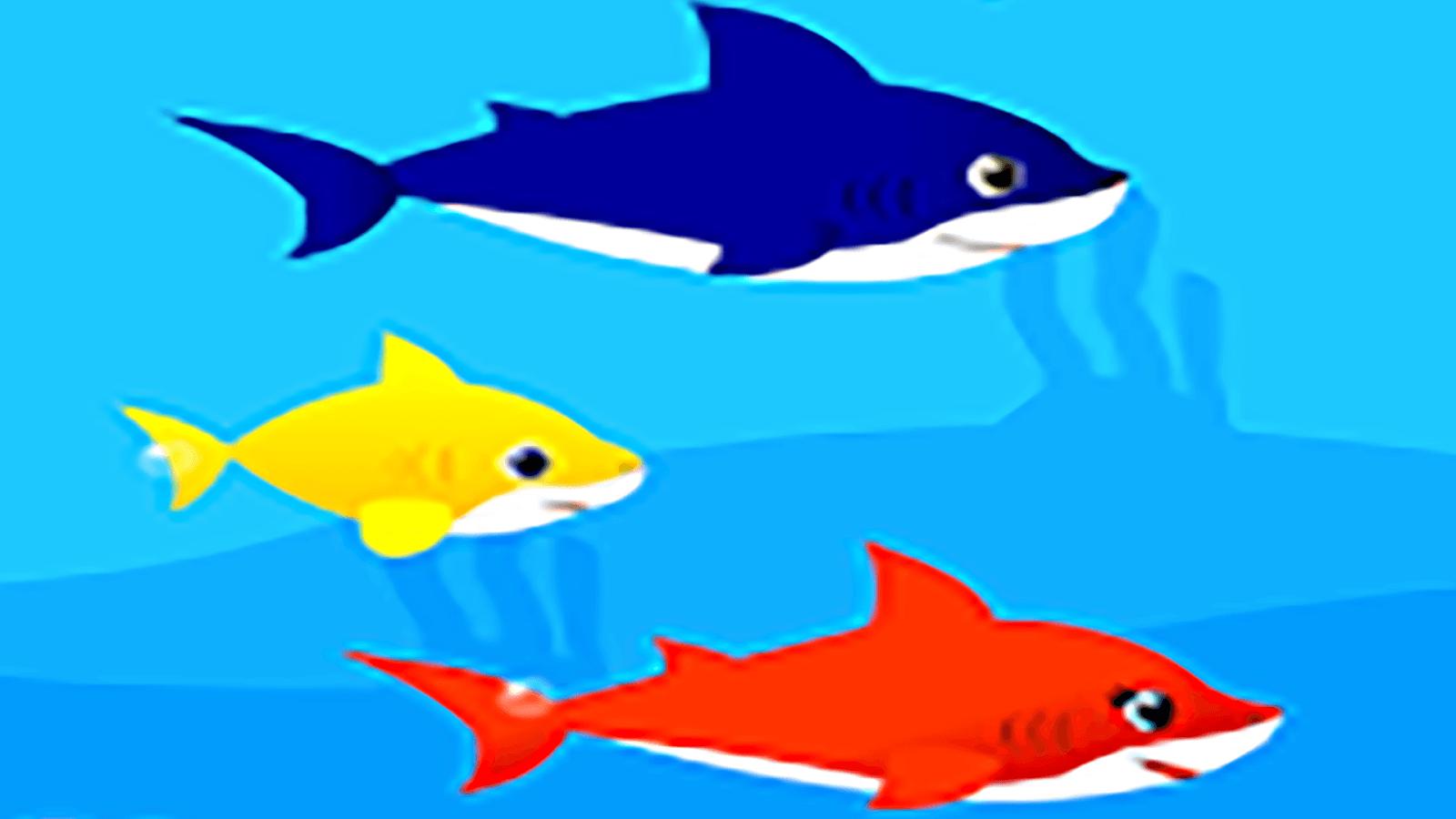 Baby Shark Wallpapers - Wallpaper Cave