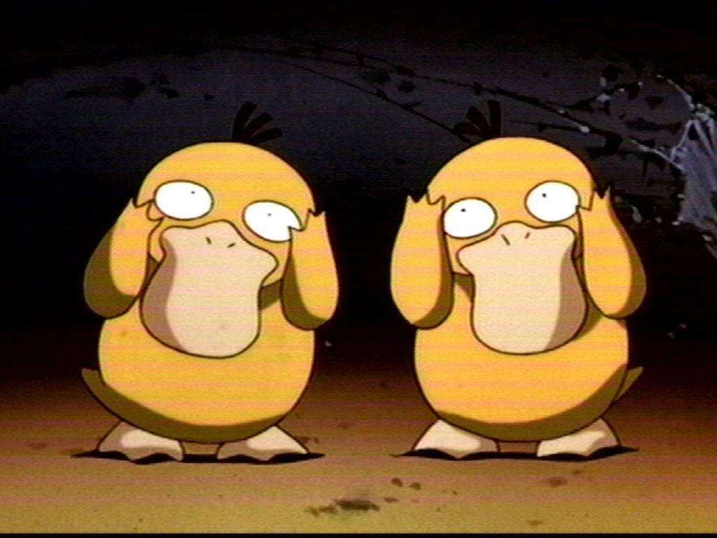 Psyduck images Psyduck HD wallpaper and background photos (466818)