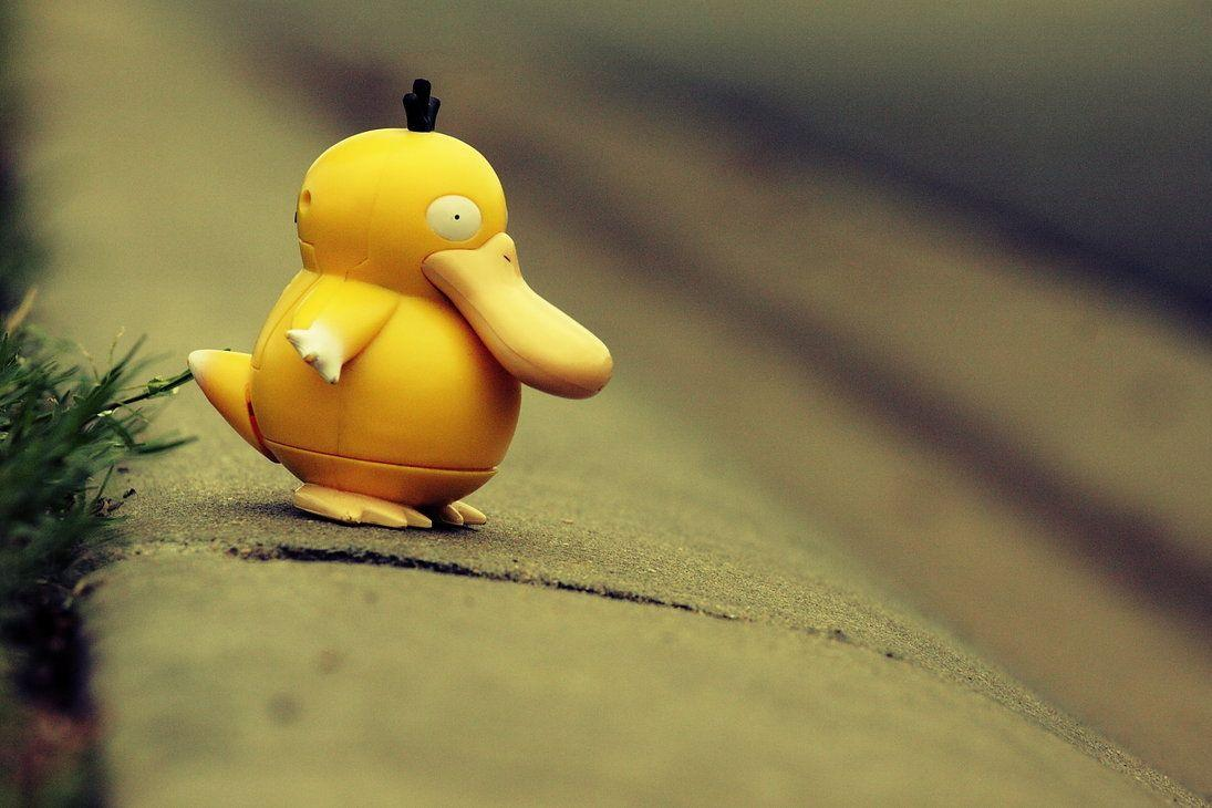 Why.did.psyduck.cross.the.road by tha-alkaholiks on DeviantArt