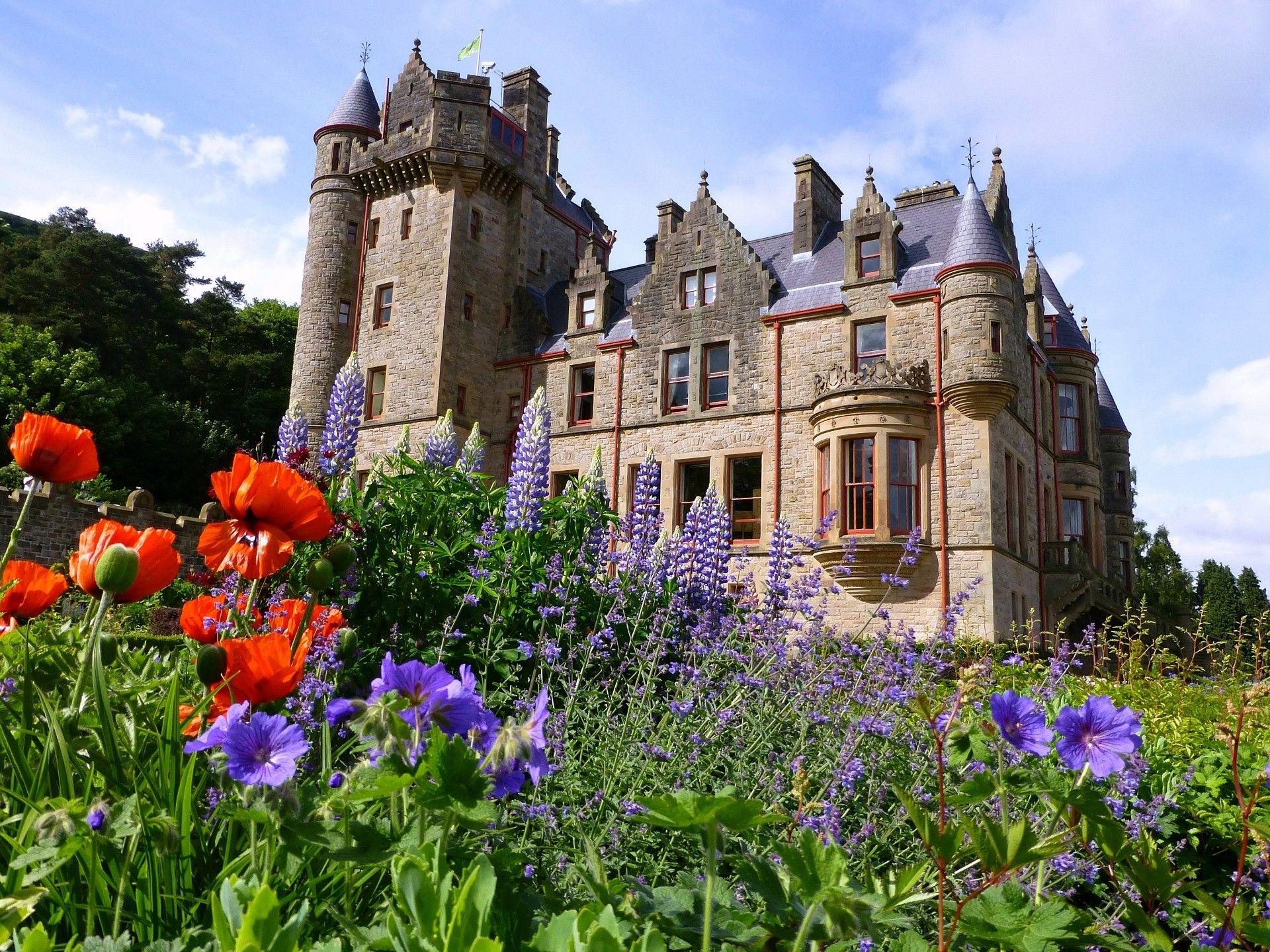 Medieval: Belfast Castle Ireland Flowers Backgrounds Pictures for