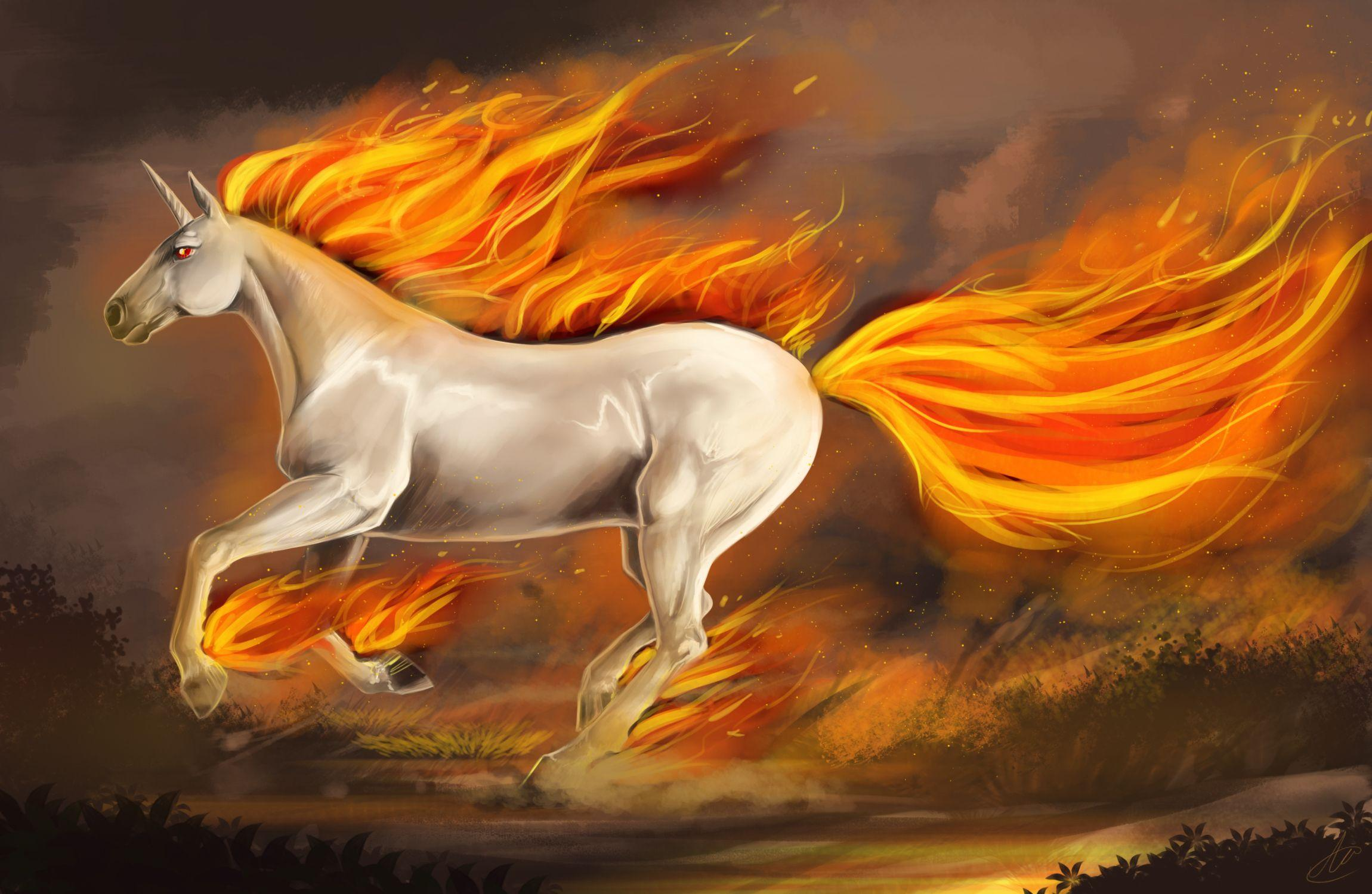 Unicorn wallpapers and images wallpapers pictures photos | HD ...