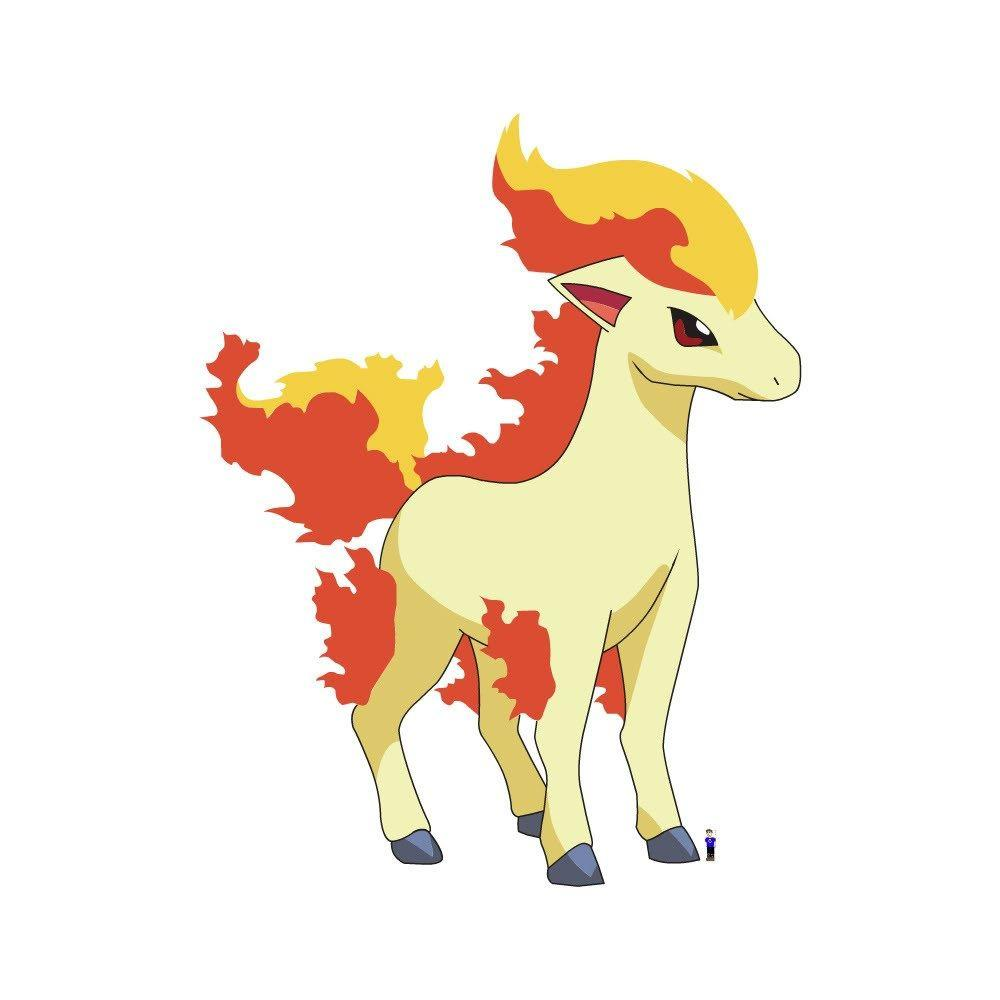 ponyta photos