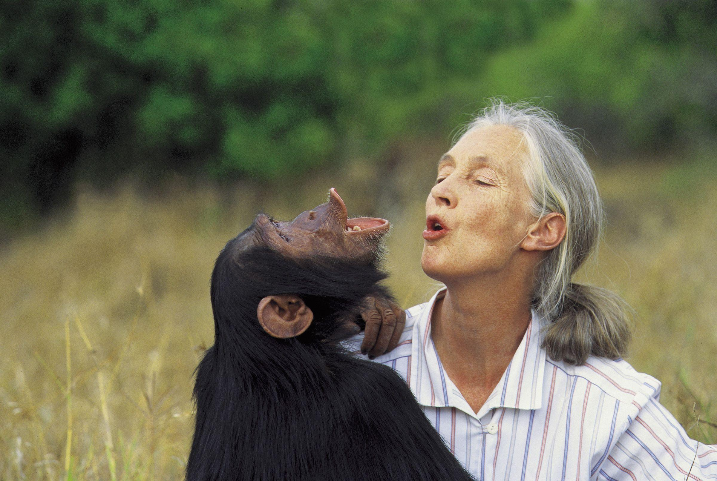Jane Goodall HD Images | Jane Goodall Photos | FanPhobia ...