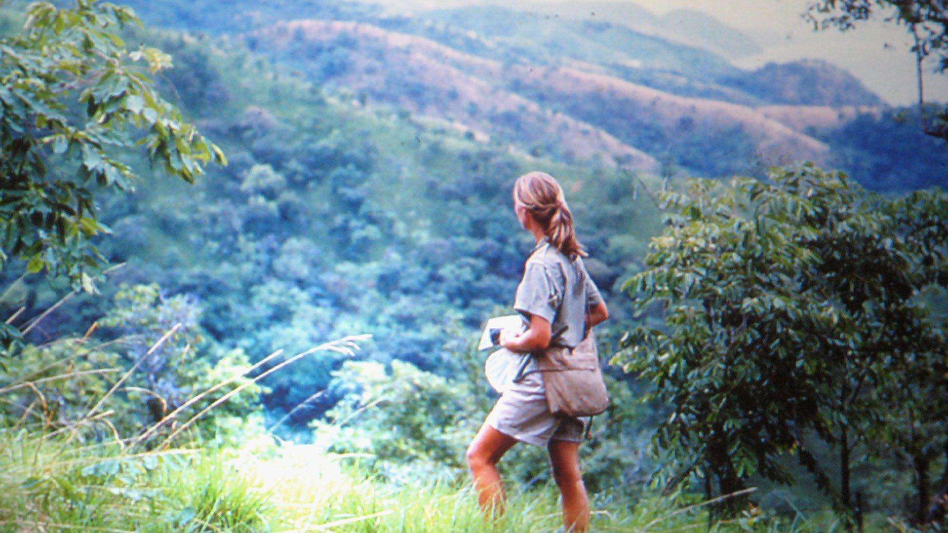 New Jane Goodall Documentary Draws Critical Acclaim - Natural ...