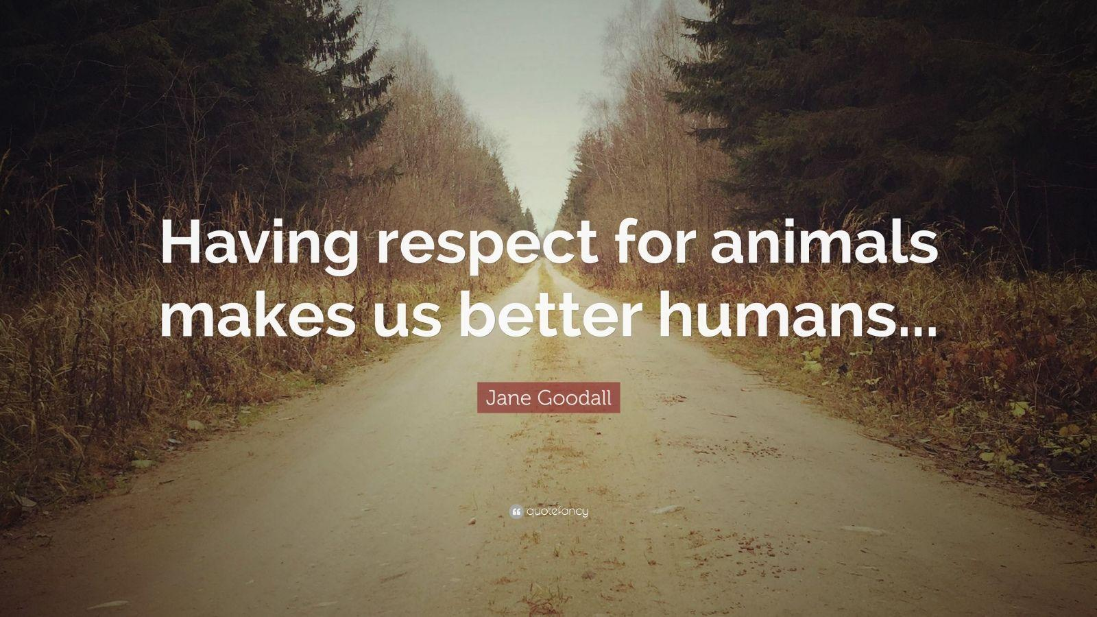 Jane Goodall Quotes (100 wallpapers) - Quotefancy
