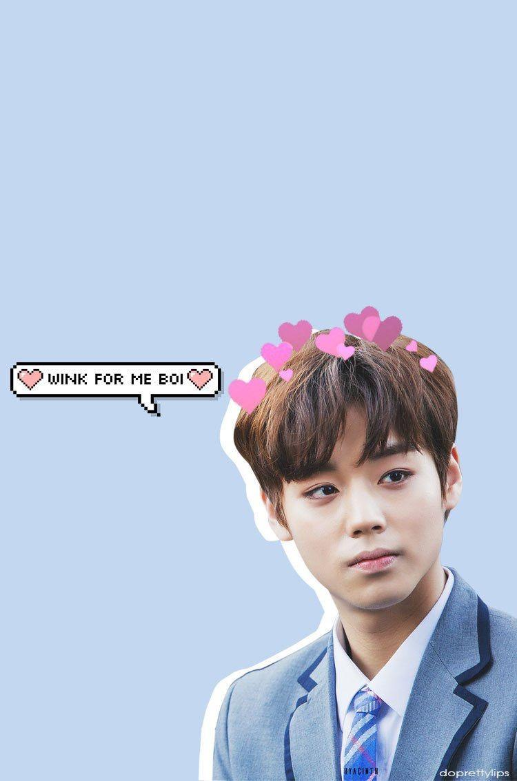 produce101 #jihoon #wallpaper | Wallpapers p.2❤ | Pinterest ...