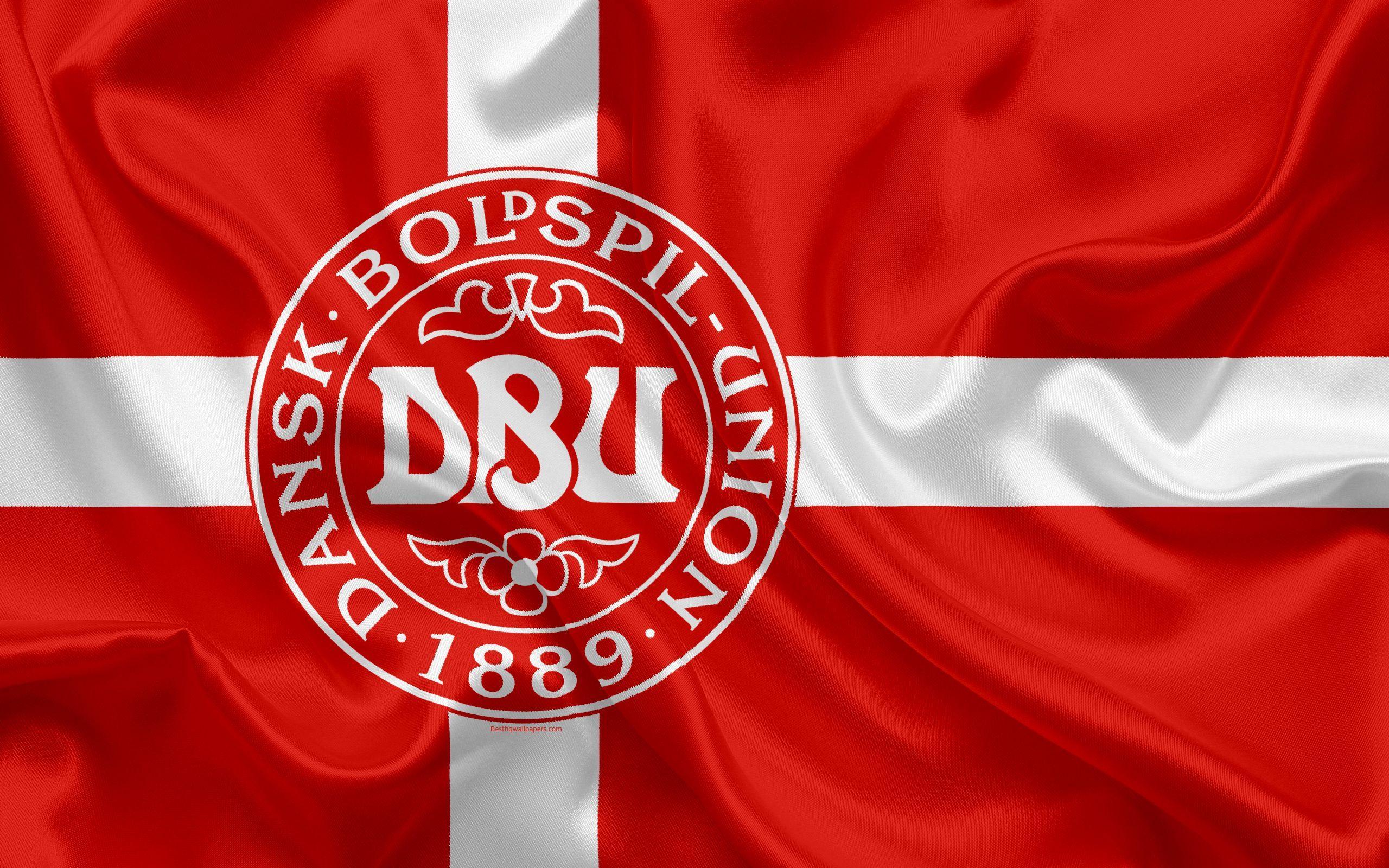 Denmark National Football Team Zoom Background 2