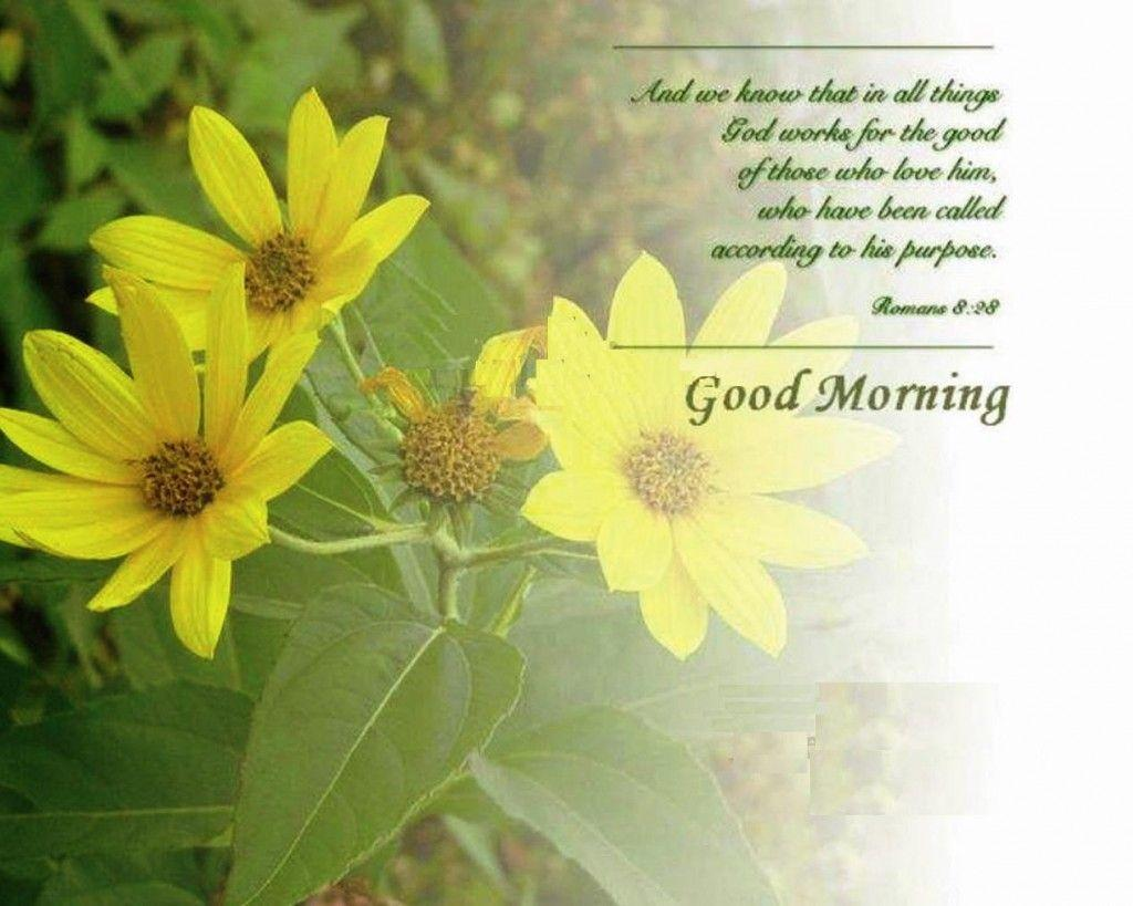 Good Morning Image Wallpapers ...