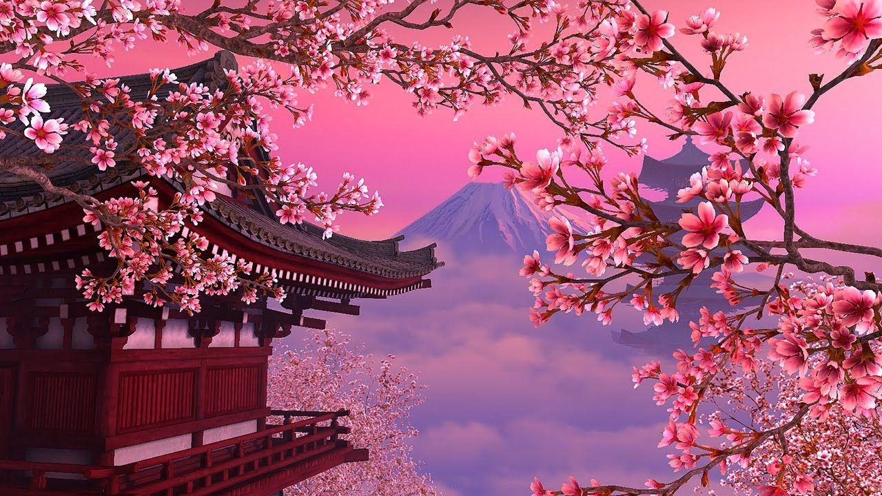 Cherry Tree Wallpapers - Wallpaper Cave