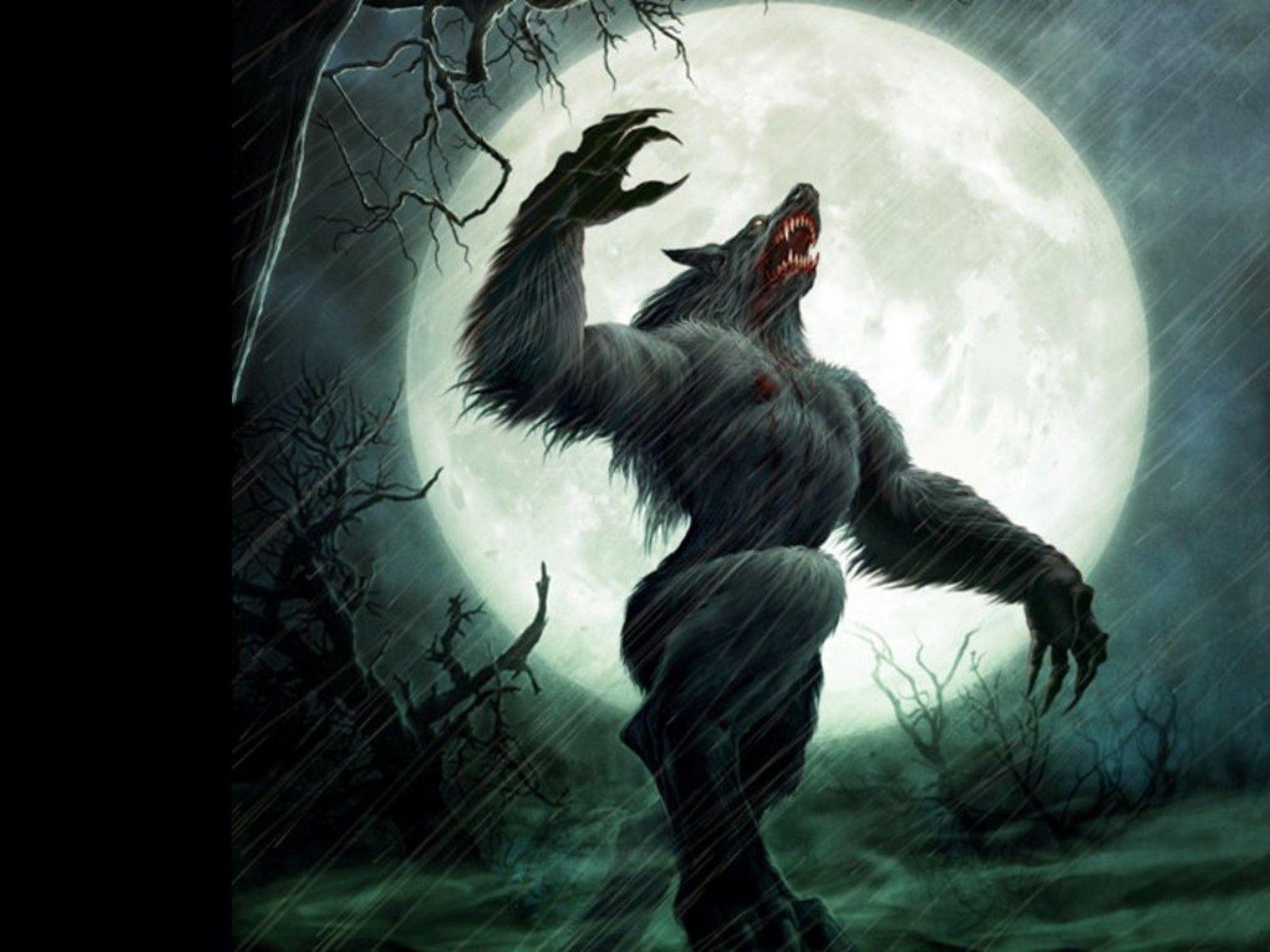 Werewolf Anime Wallpapers - Wallpaper Cave