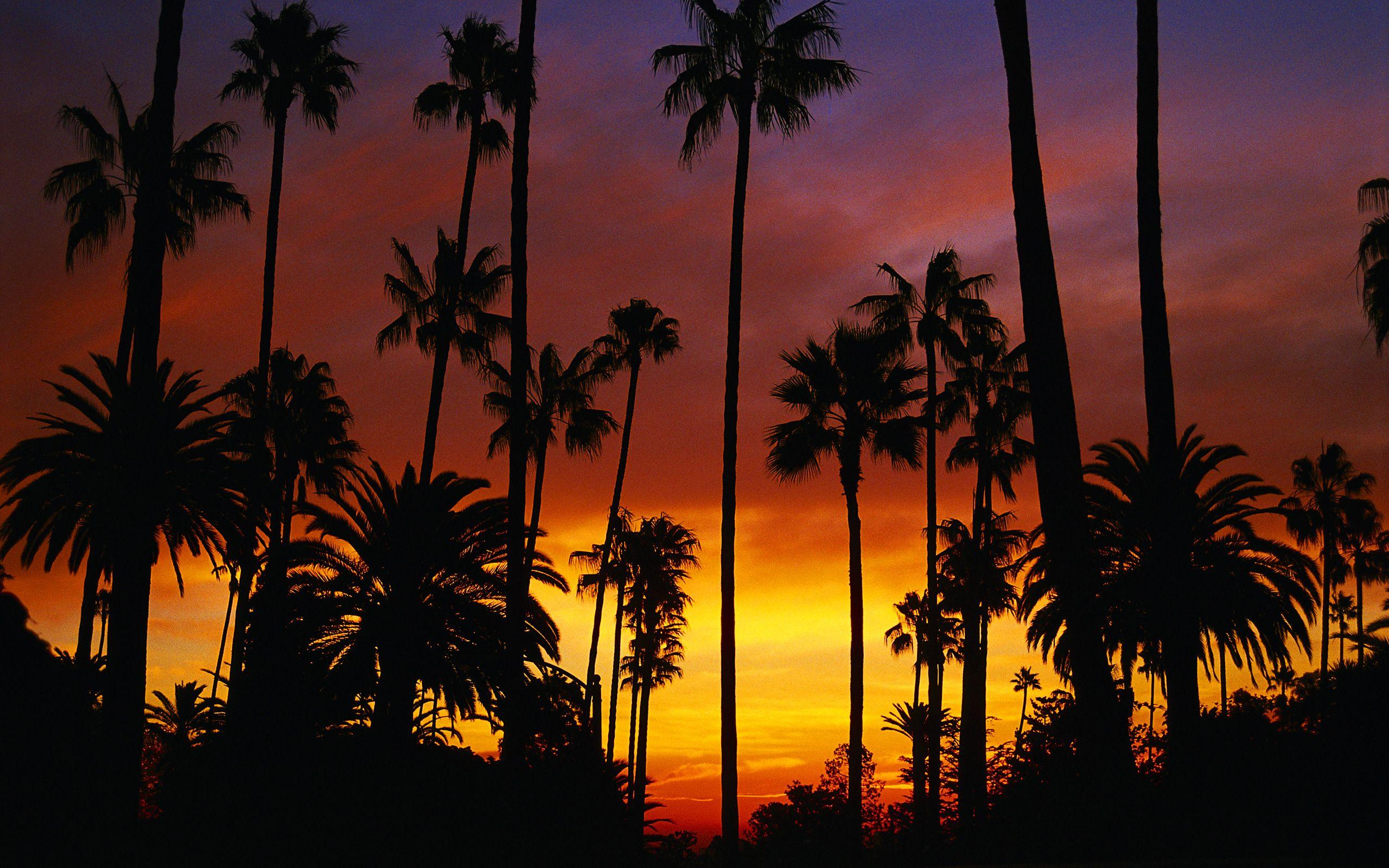 california backgrounds Collection (66+)