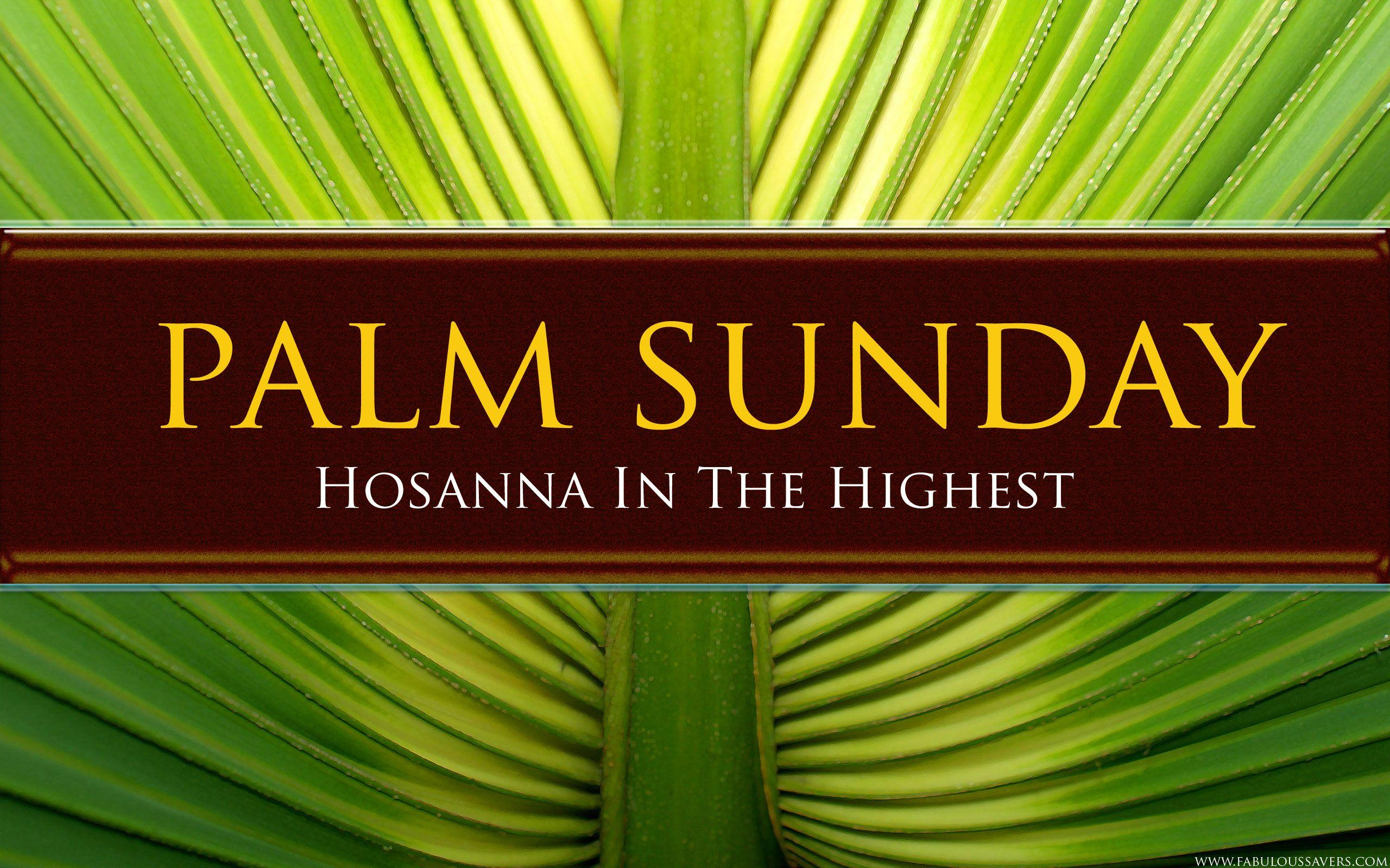 Palm Sunday 2014 Wallpapers Free Download HD Backgrounds