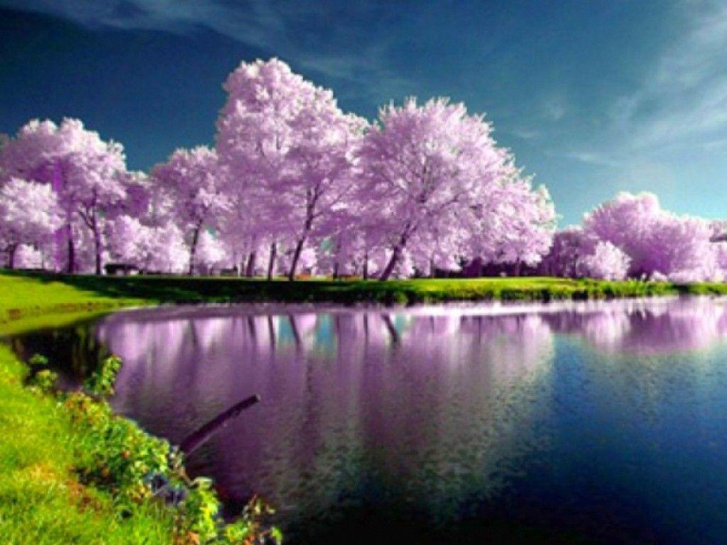 Backgrounds Spring Nature High Resolution With Desktop Wallpapers