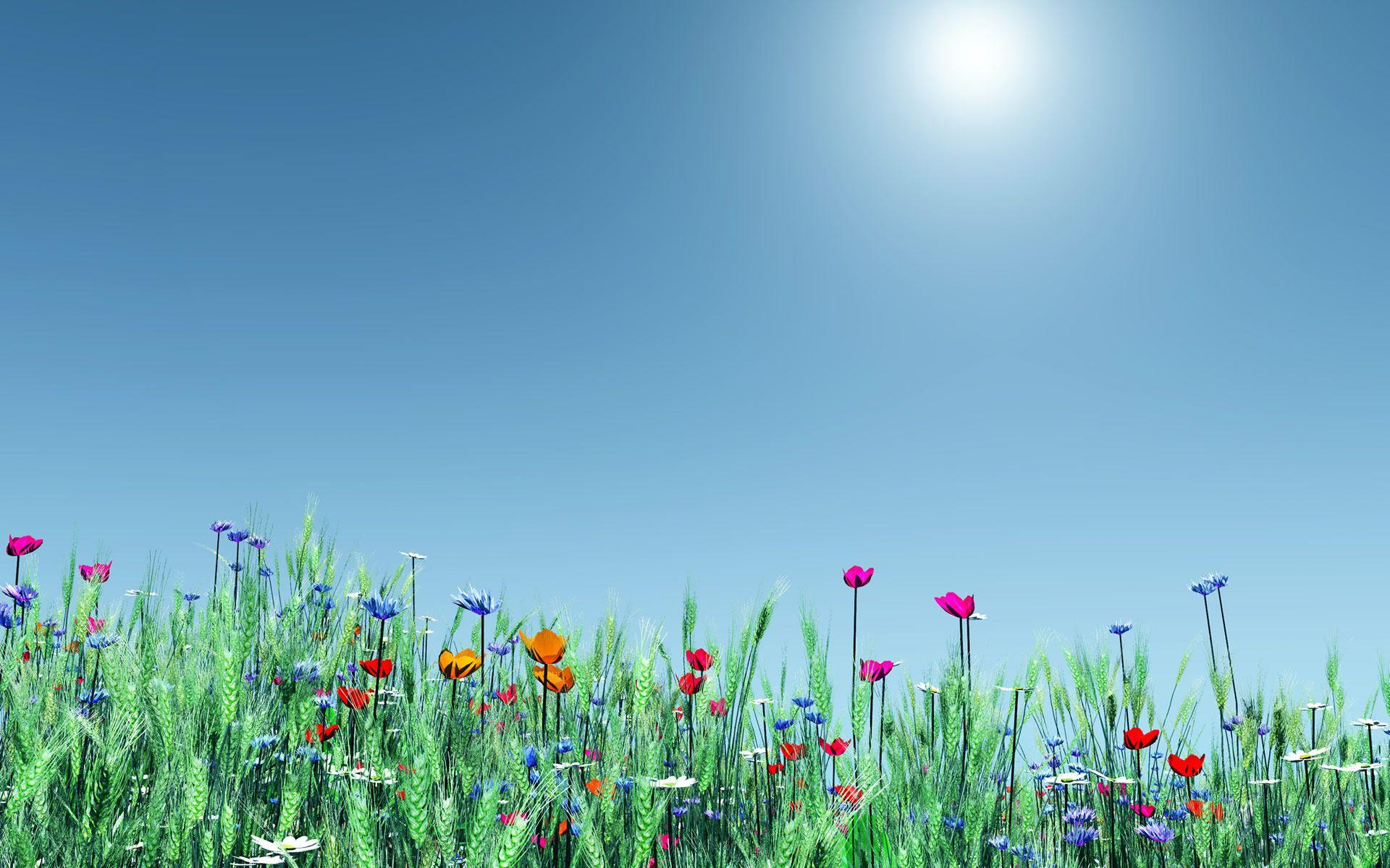 Spring-Flowers-Wallpapers.jpg - Clip Art Library
