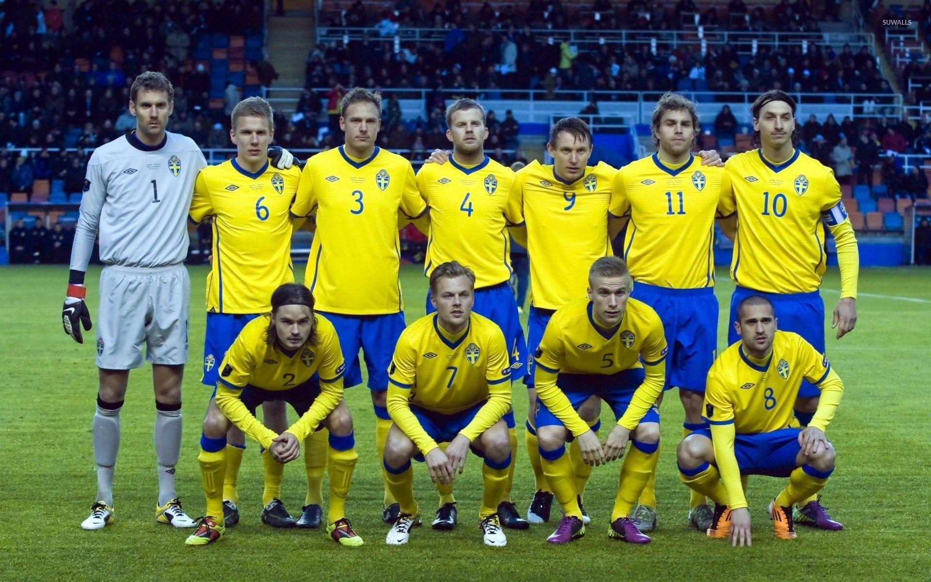 Sweden National Football Team Zoom Background