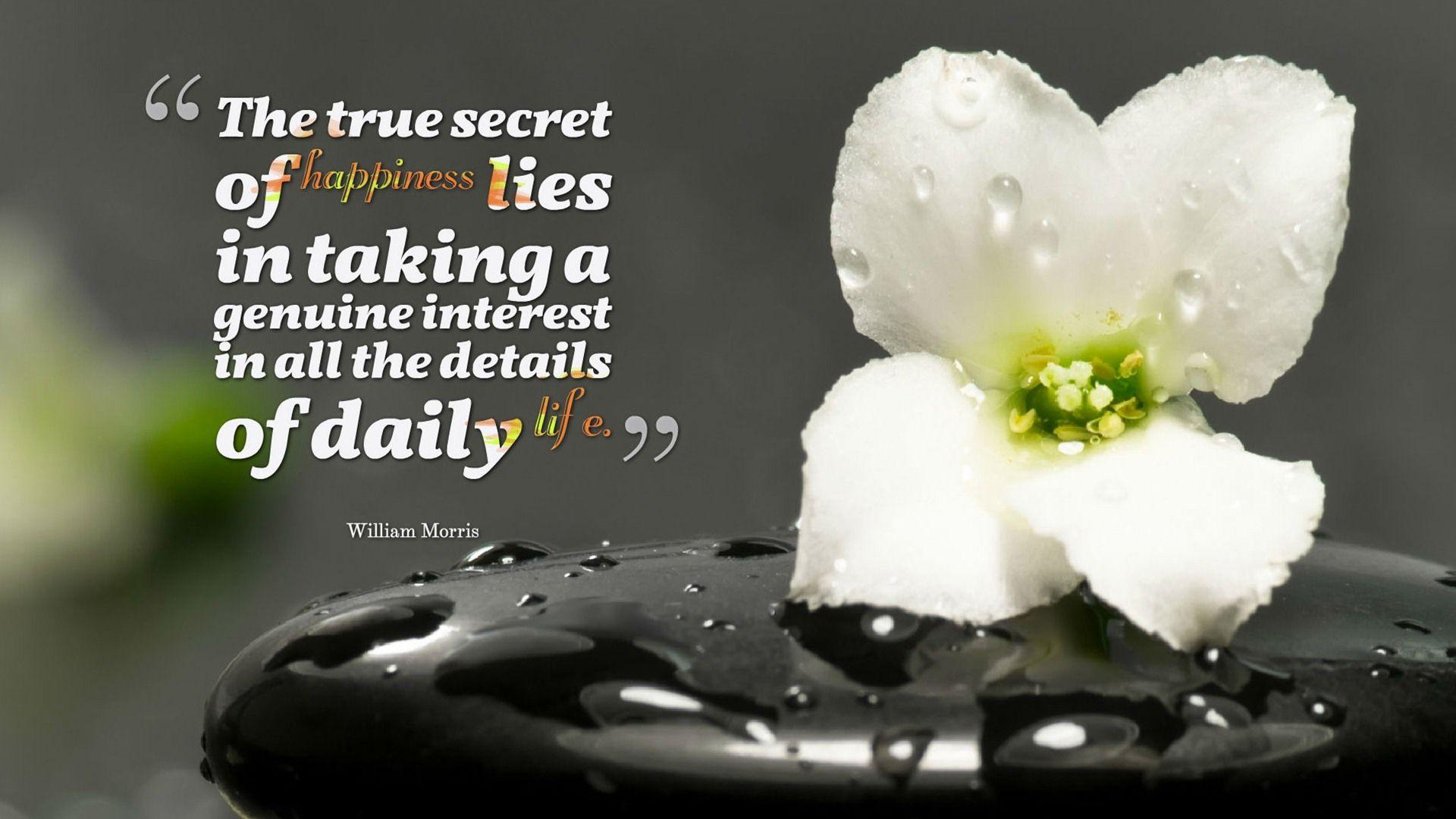 Secrets Of Happiness Hd Gun S Wallpaper: Happy Quotes Wallpapers
