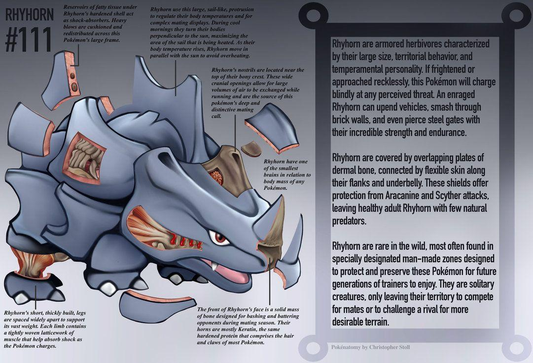 Rhyhorn Anatomy- Pokedex Entry by Christopher-Stoll on DeviantArt