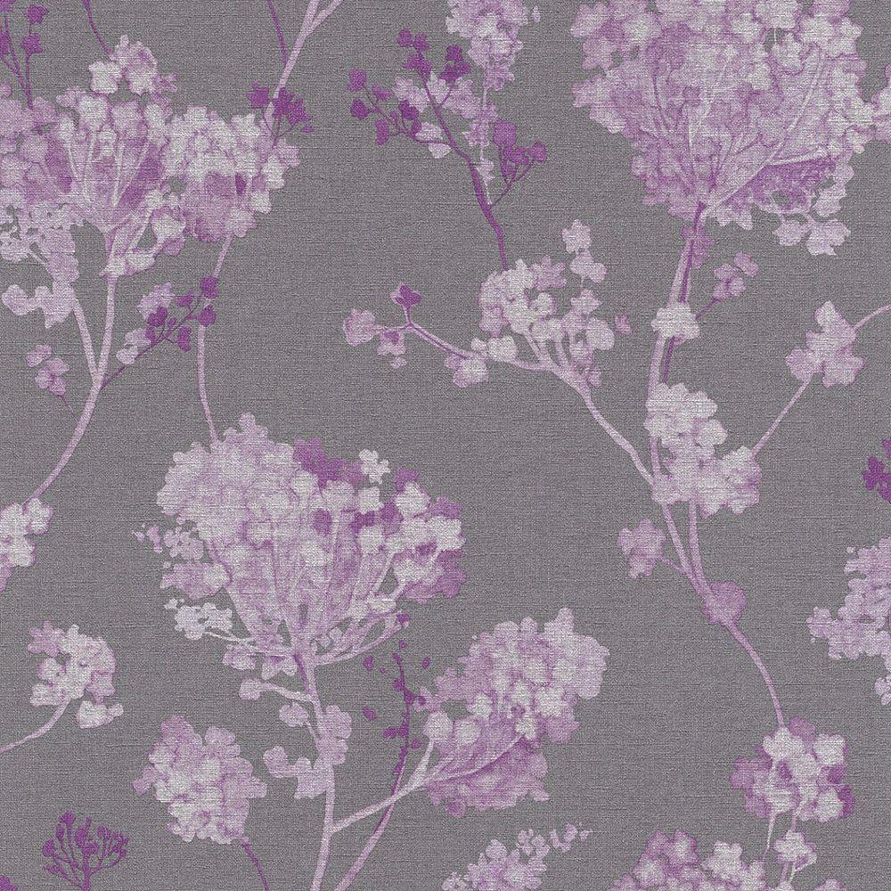 Purple Wallpaper Plum I Want