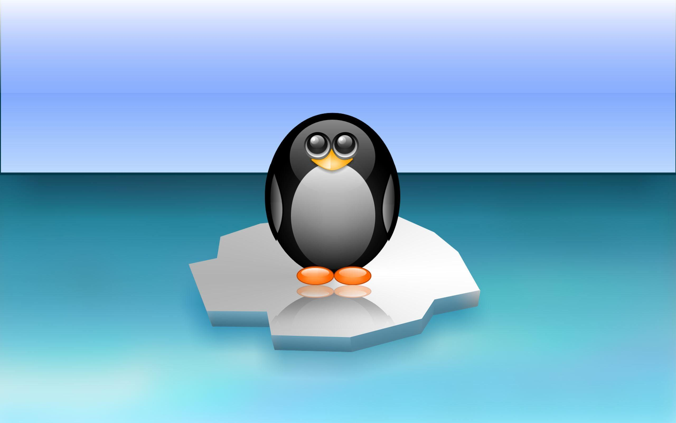 Animated Penguin Wallpapers - Wallpaper Cave