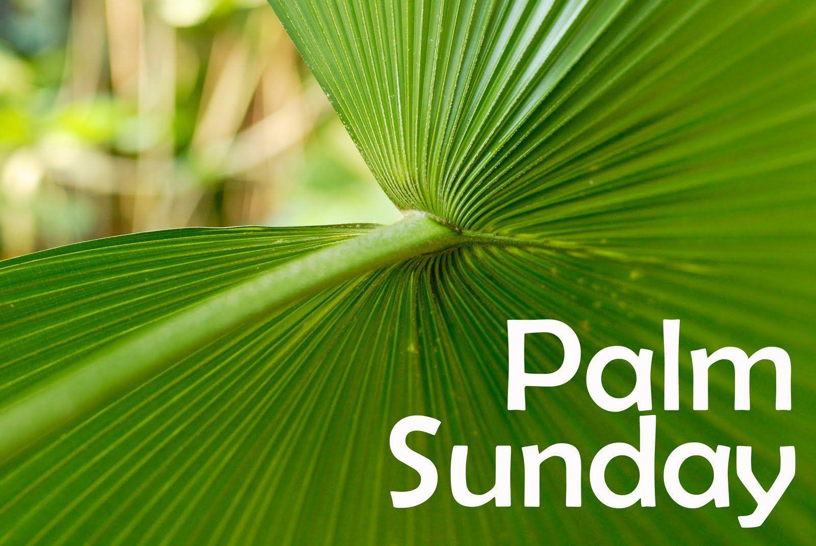 Palm Sunday Wallpaper PC Most Beautiful