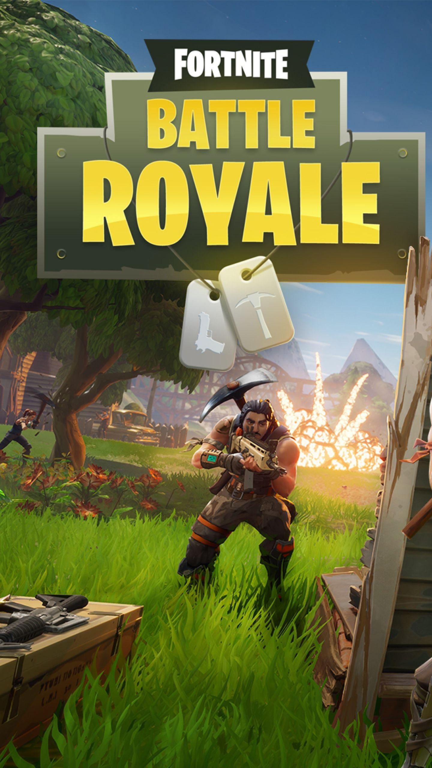 Download Fortnite Battle Royale 1440x2560 Resolution, Full HD ...