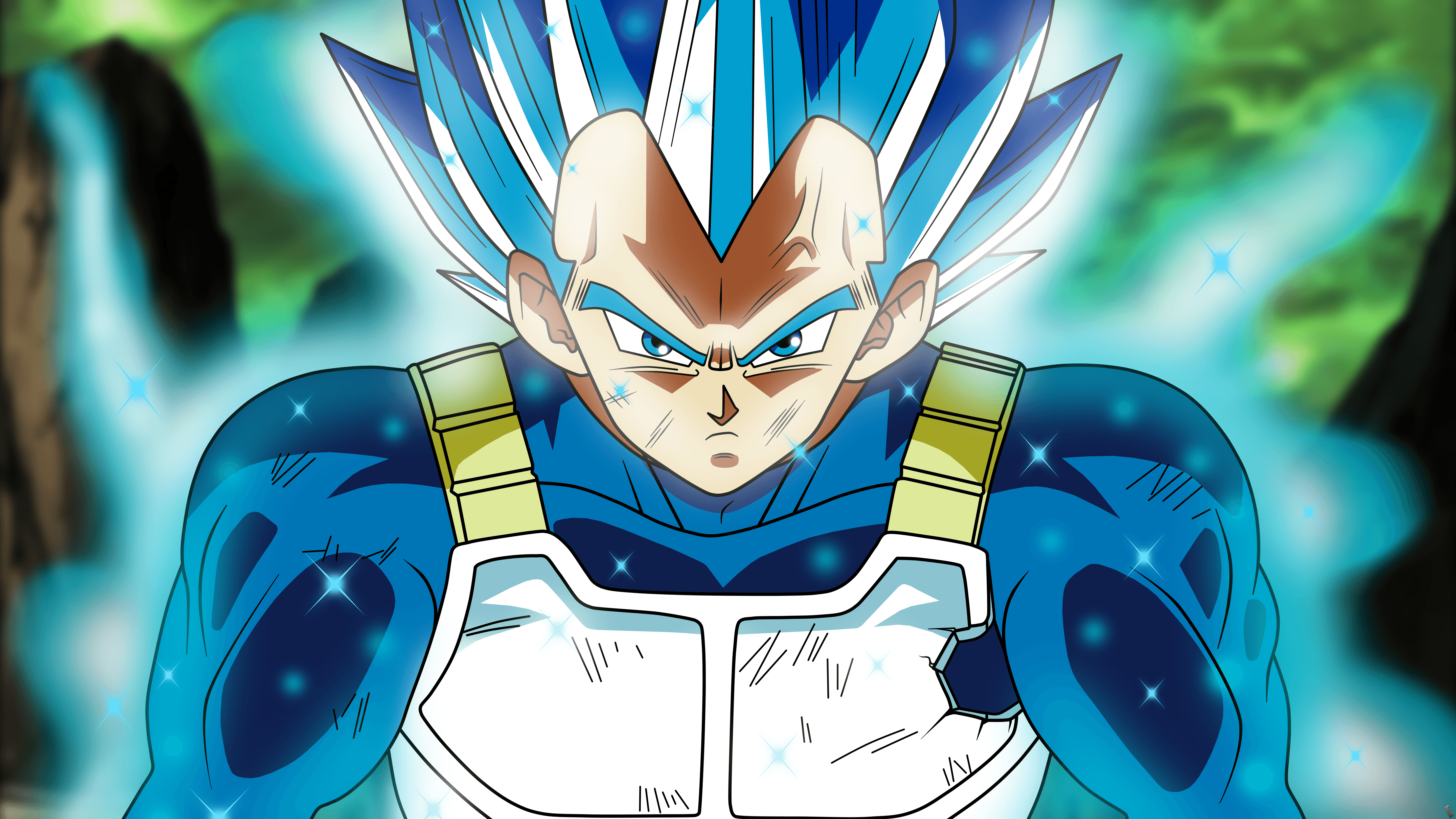 Fond D écran Dragon Ball Z Vegeta