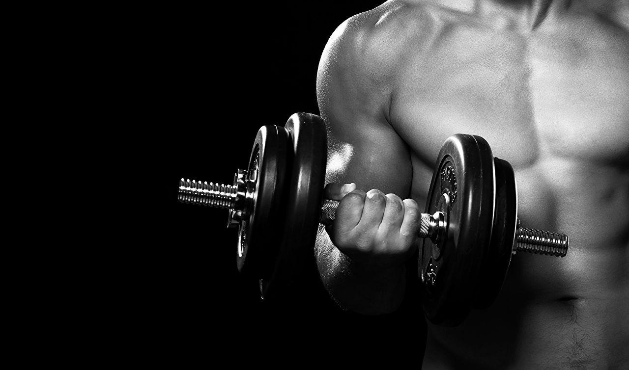 Images Man dumbbell Fitness Sport Dumbbells Hands