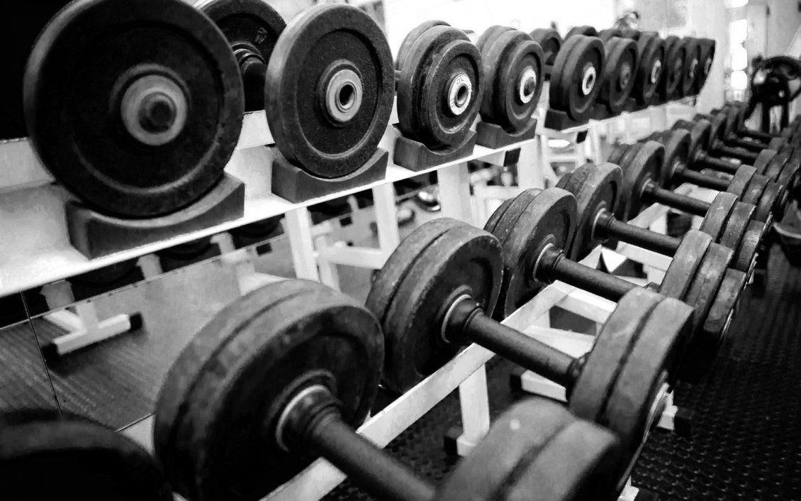 Dumbbells in a gym