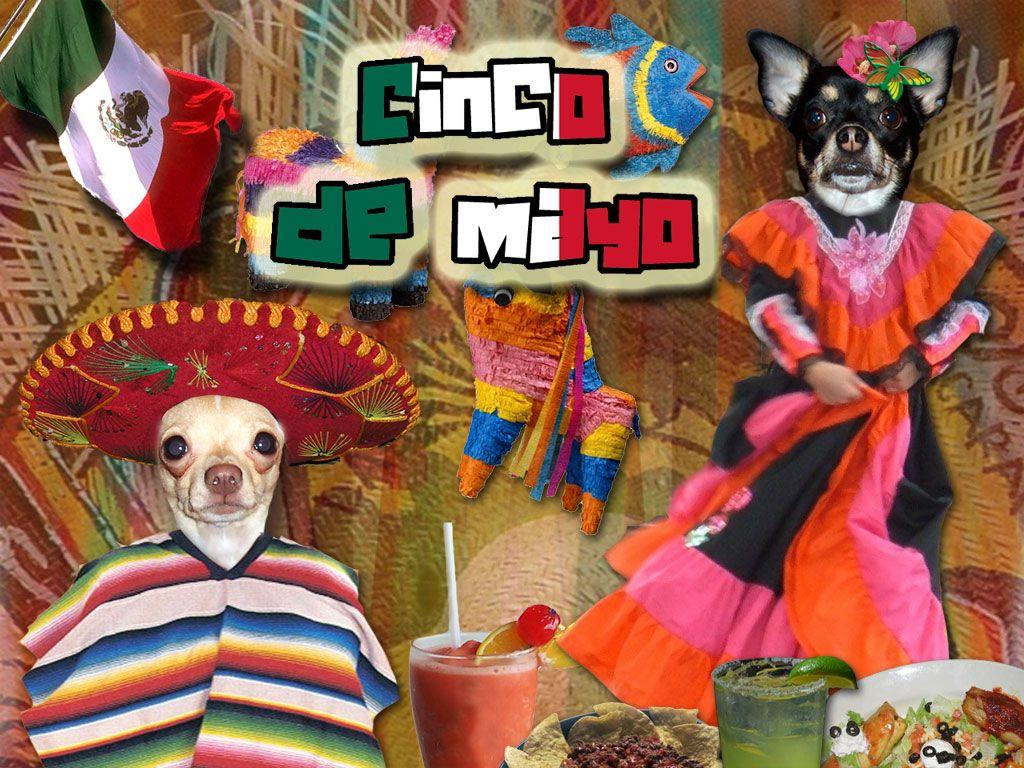 Cinco de Mayo fact check - it's all about...France? - Travel with ...