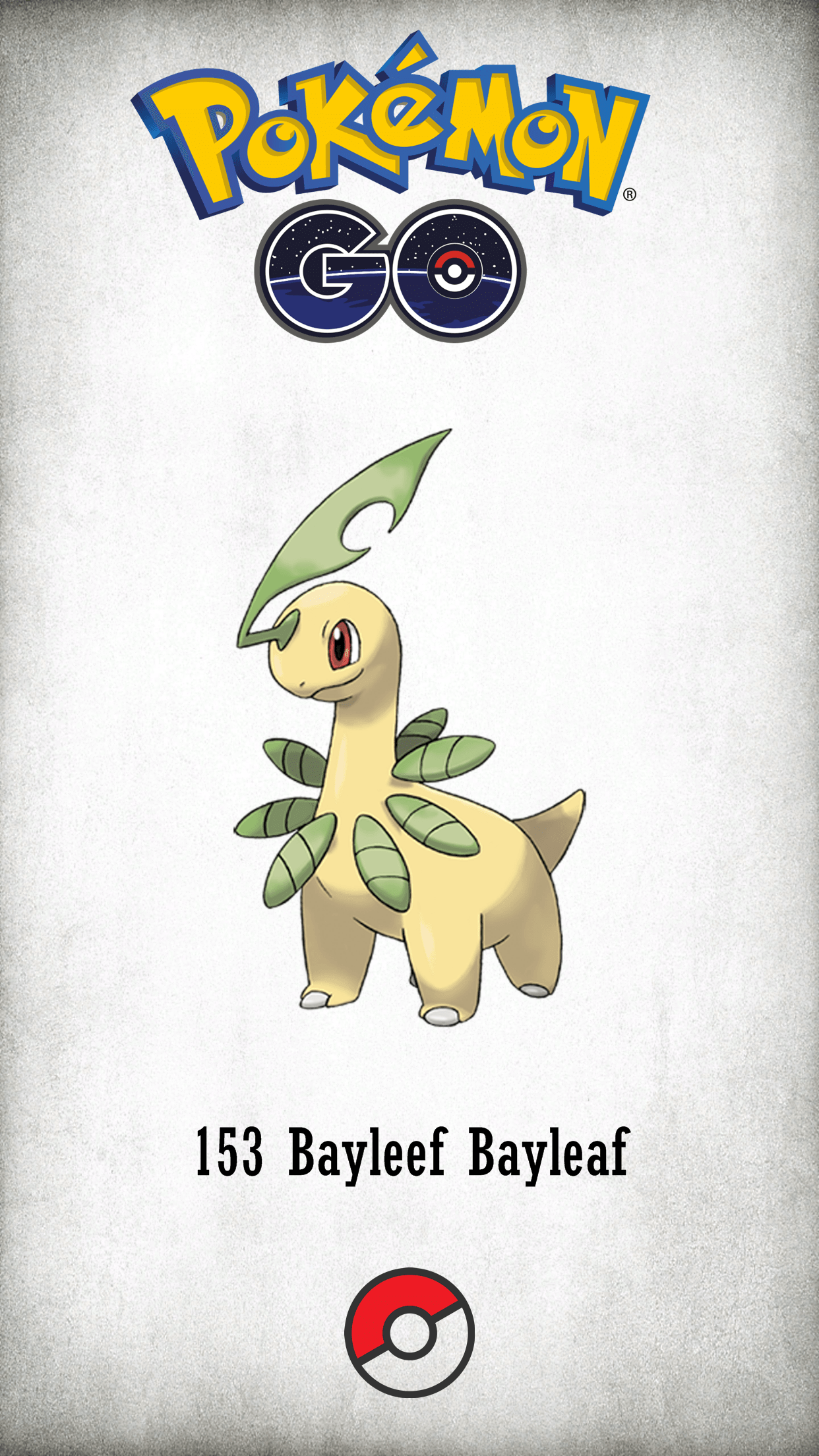 153 Character Bayleef Bayleaf | Wallpaper