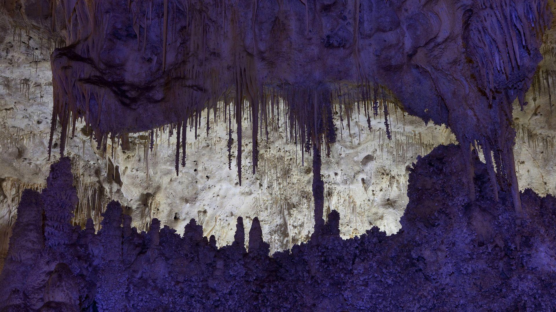 Carlsbad Caverns National Park New Mexico