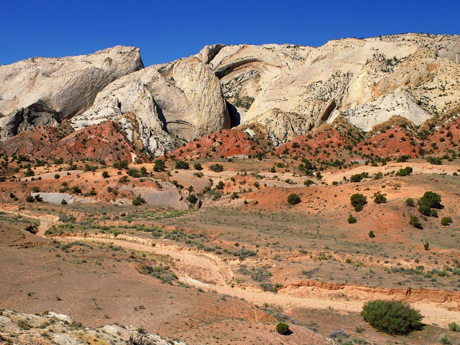 Nature: The Waterpocket Fold, Capitol Reef National Park, Utah