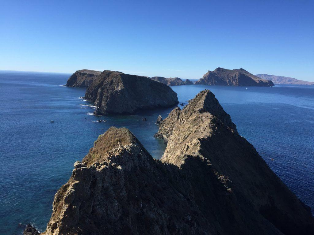 This is what volunteering at Channel Islands National Park looks