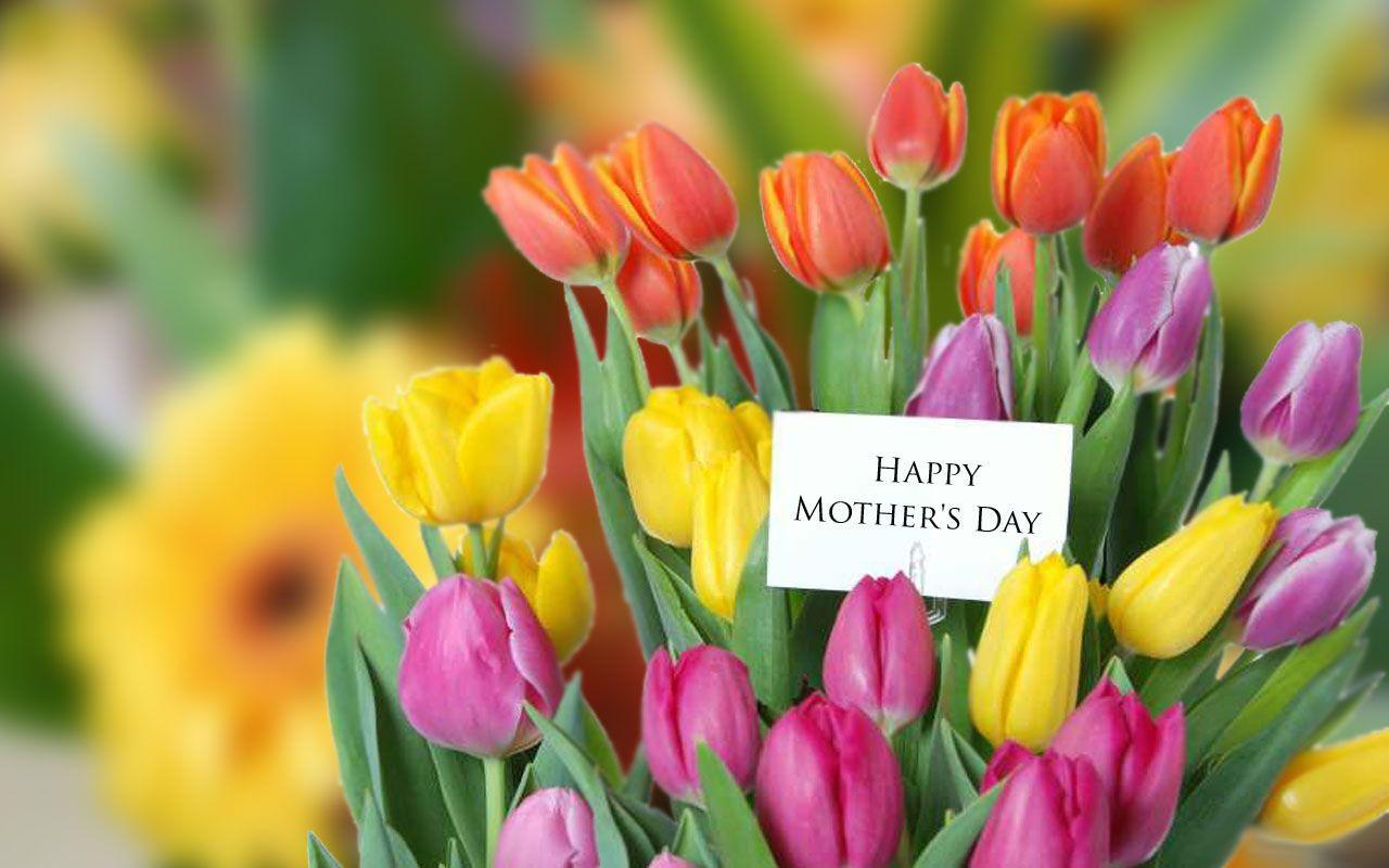 Mother's Day Ideas: Flowers for Every Budget