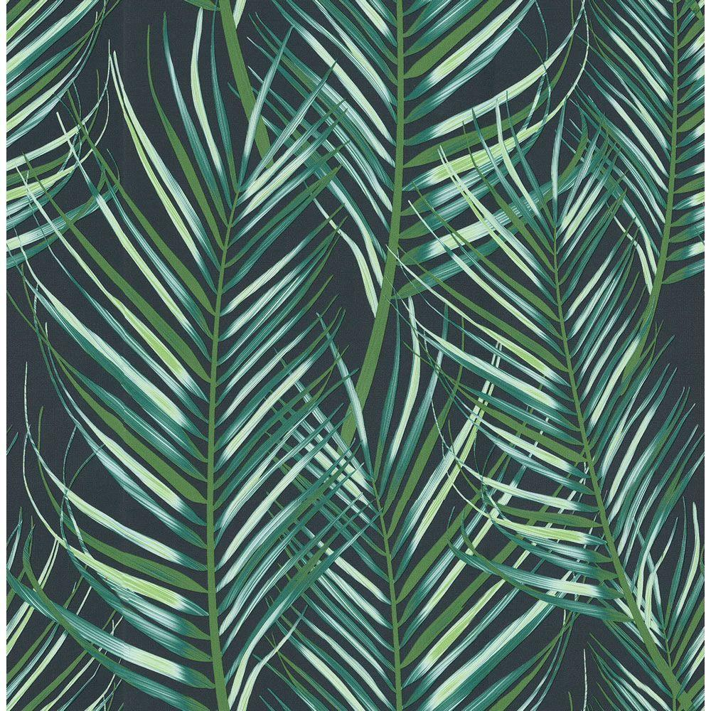 Palm leaves wallpapers wallpaper cave - Space wallpaper wilko ...