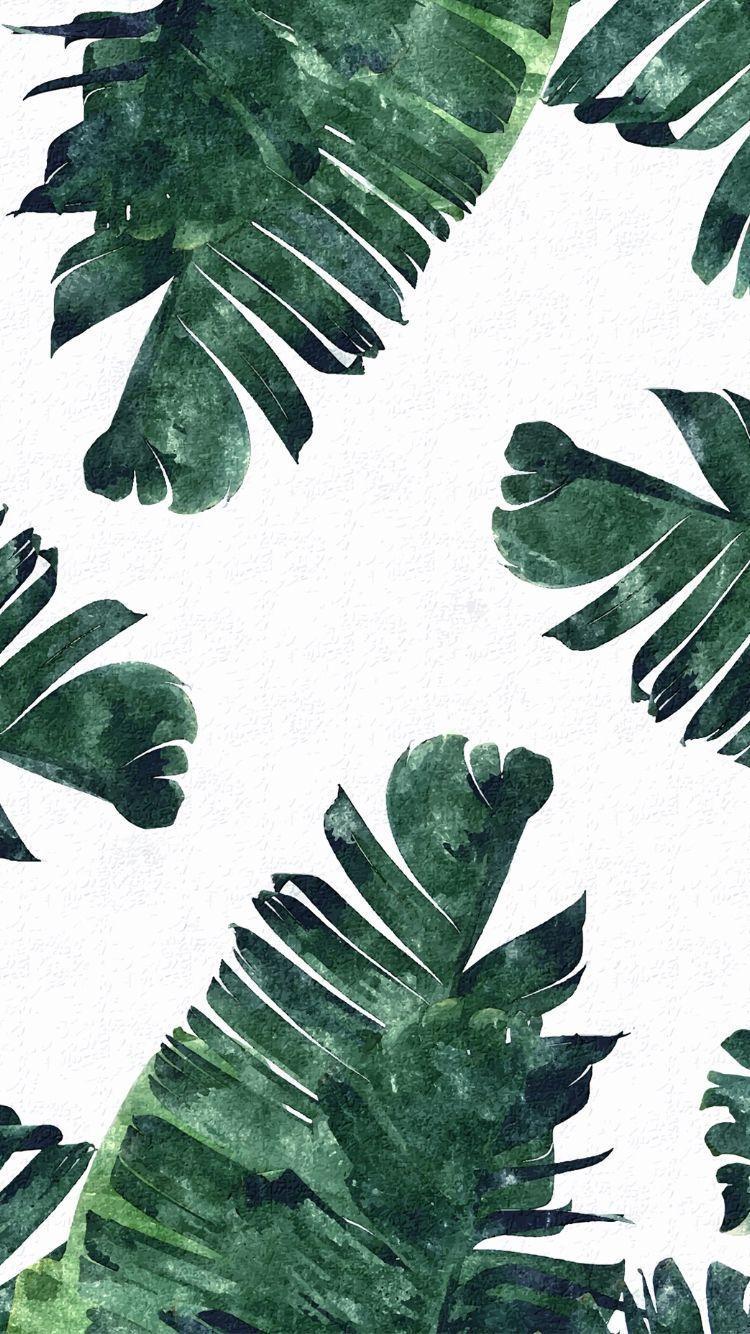Tropical Leaves Hd Phone Wallpapers Wallpaper Cave Tropical wallpaper borders for bathrooms. tropical leaves hd phone wallpapers