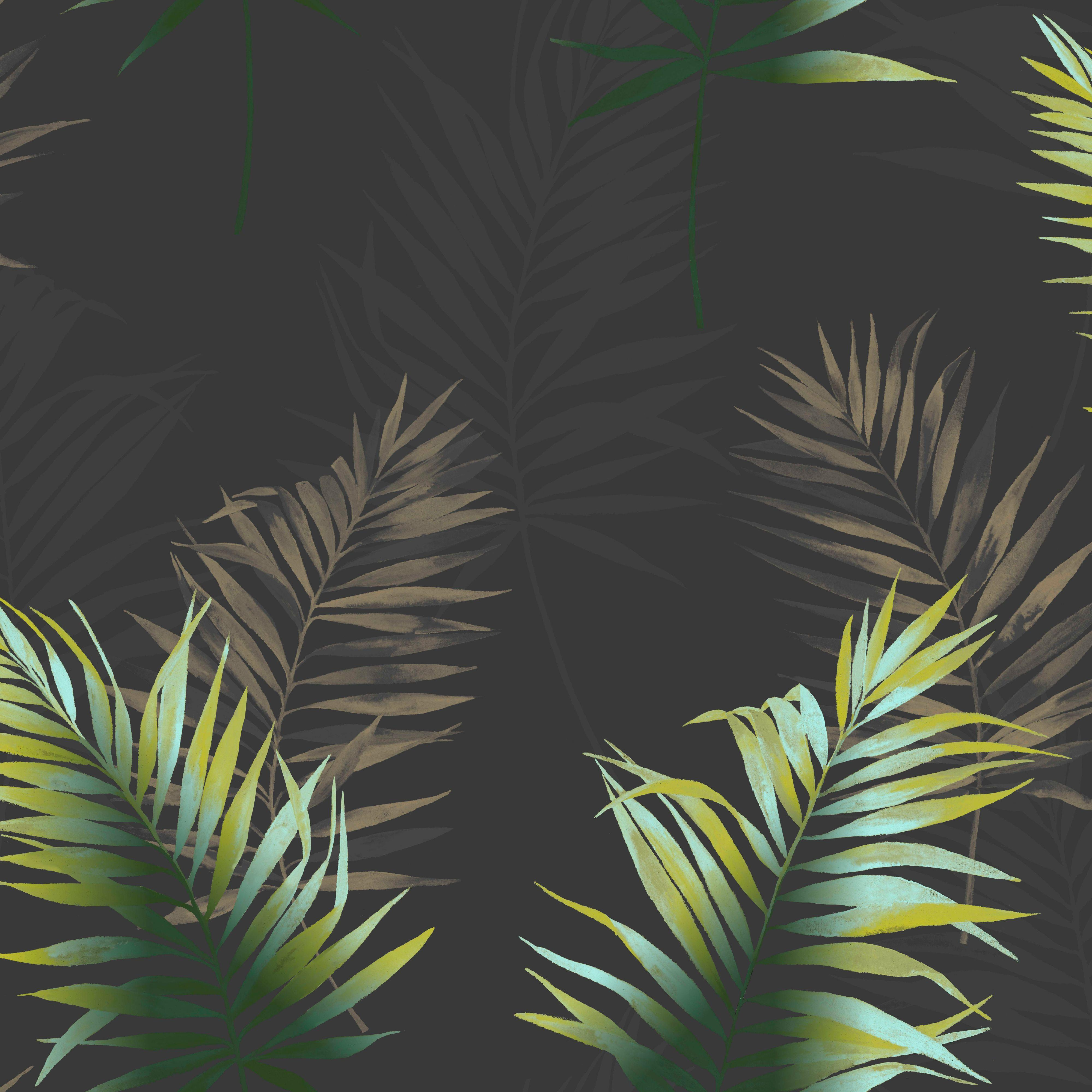 Fine Decor Kalani Black Green Palm Leaf Wallpaper
