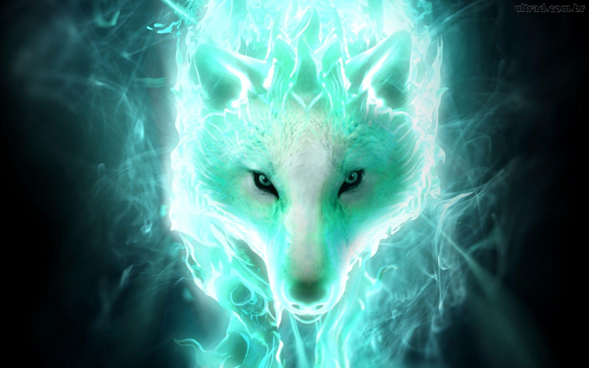 Cool Green Wolf Wallpapers
