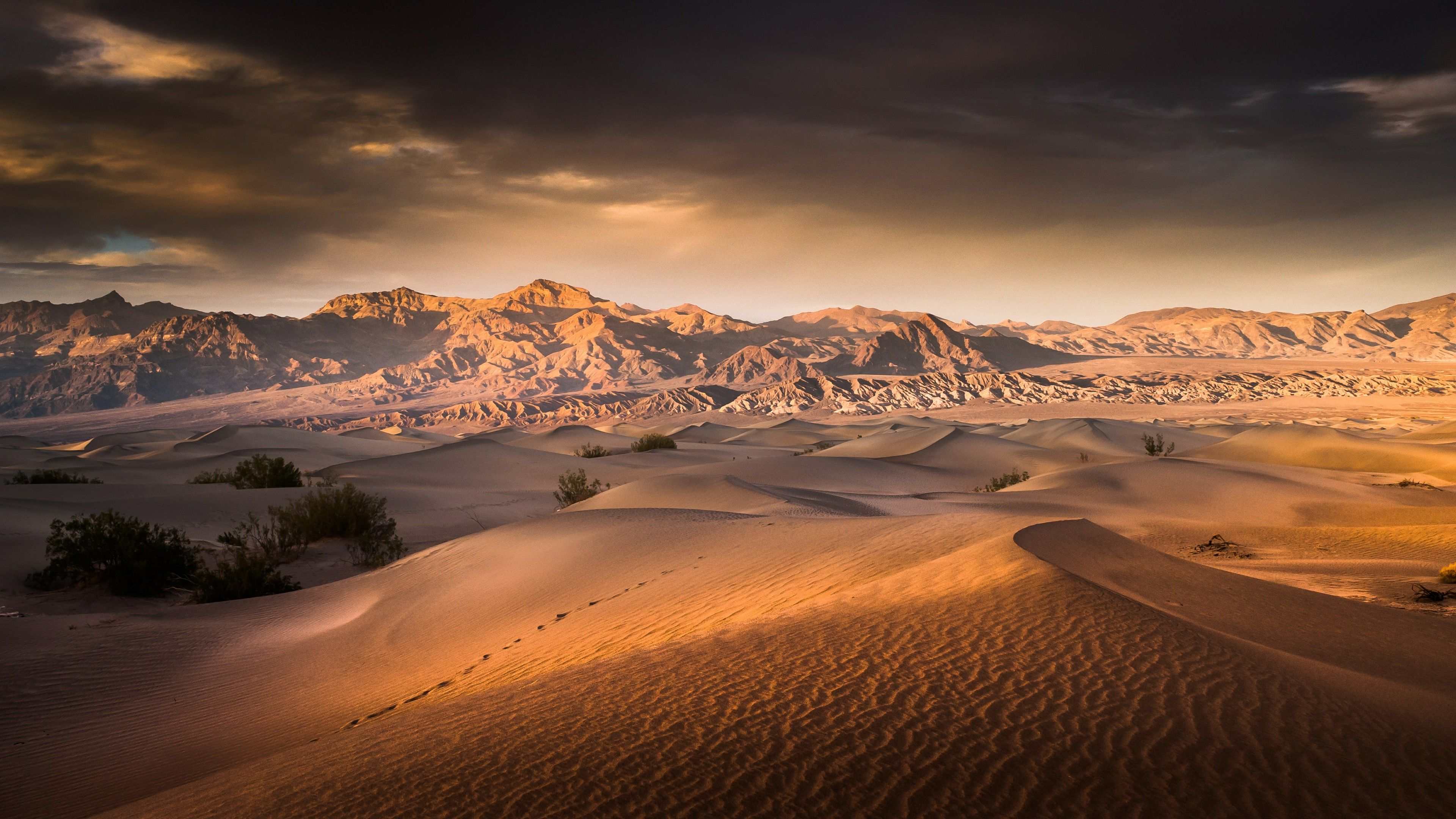 Sunrise Over The Mesquite Flat Sand Dunes