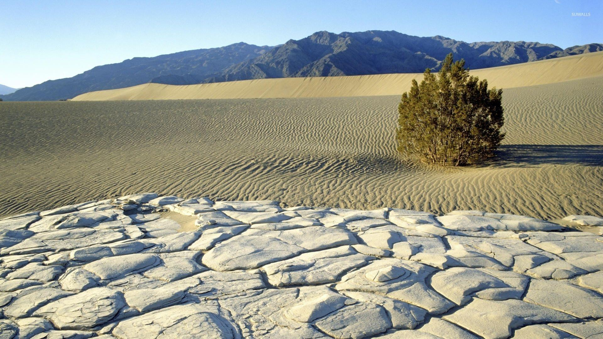 Sunny day in Death Valley National Park wallpapers