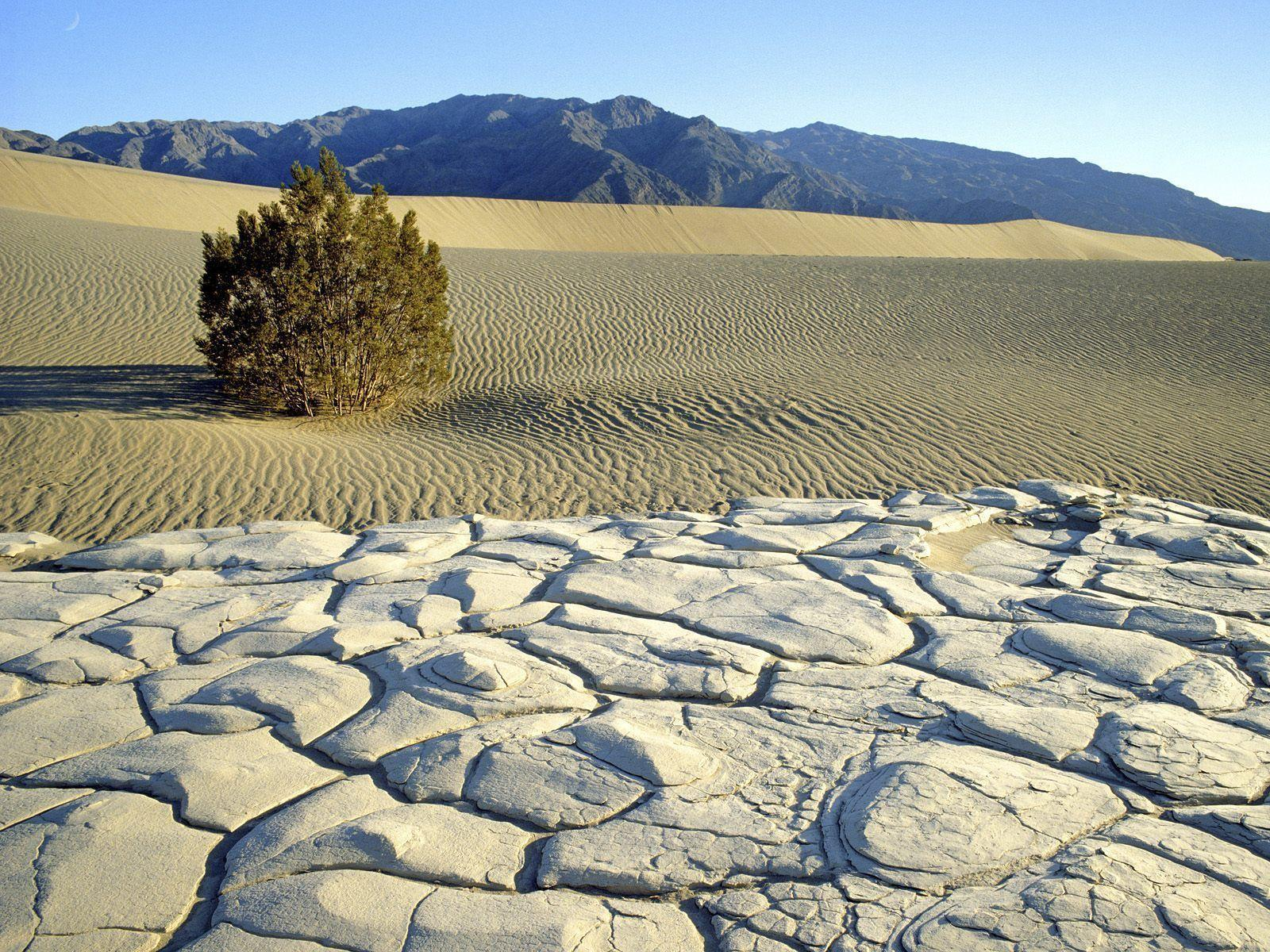 Nature: Death Valley National Park, California, picture nr. 47114