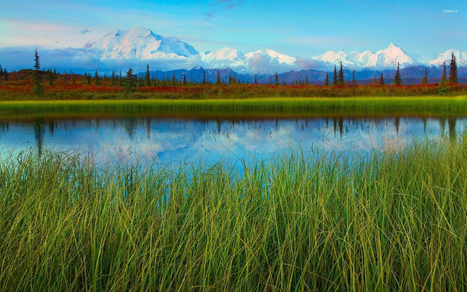 Denali National Park and Preserve wallpapers