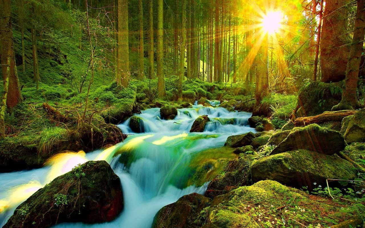 3d Hd Nature Wallpapers For Mobile Wallpaper Cave