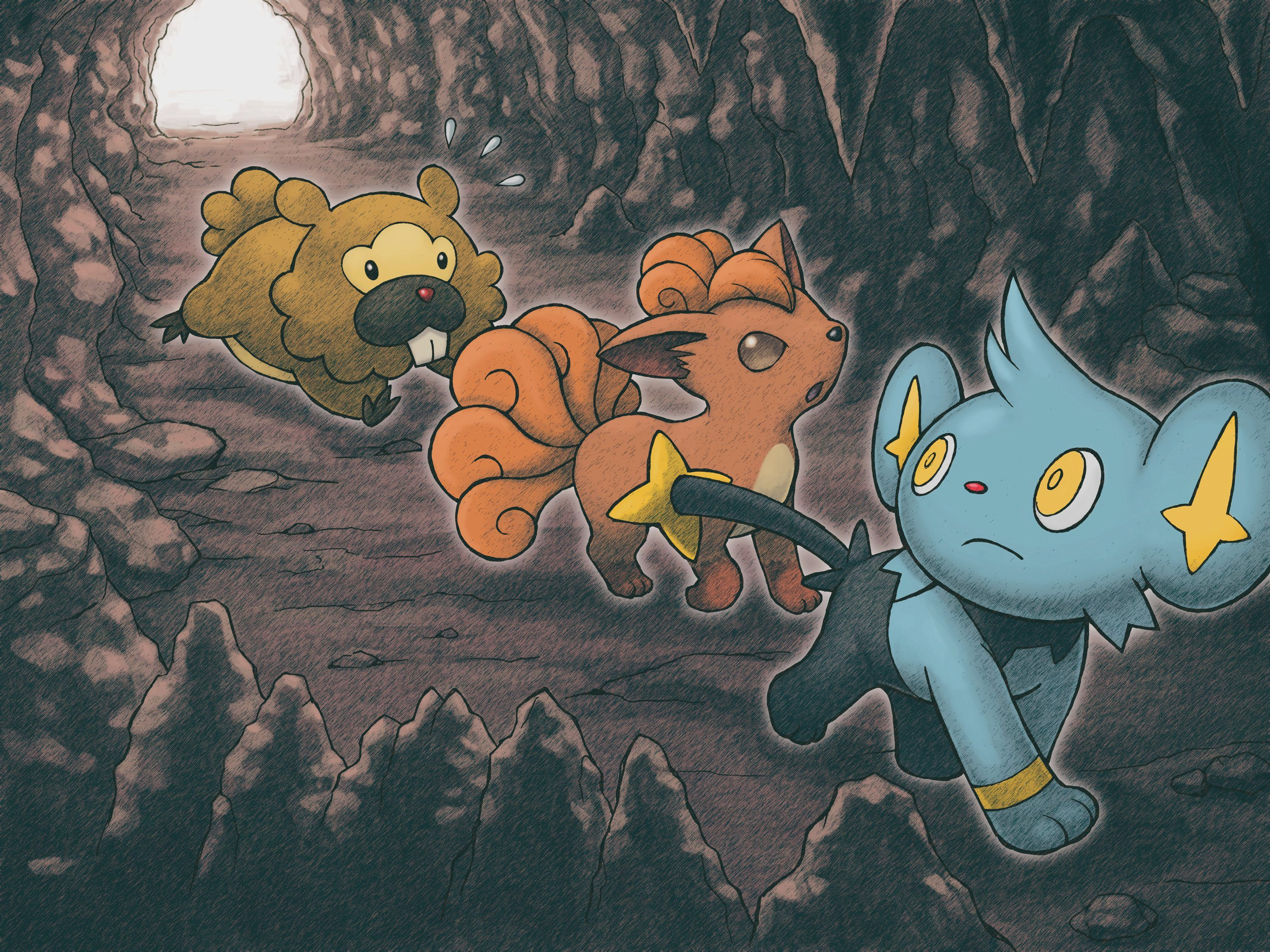 4 Shinx (Pokémon) HD Wallpapers | Background Images - Wallpaper Abyss