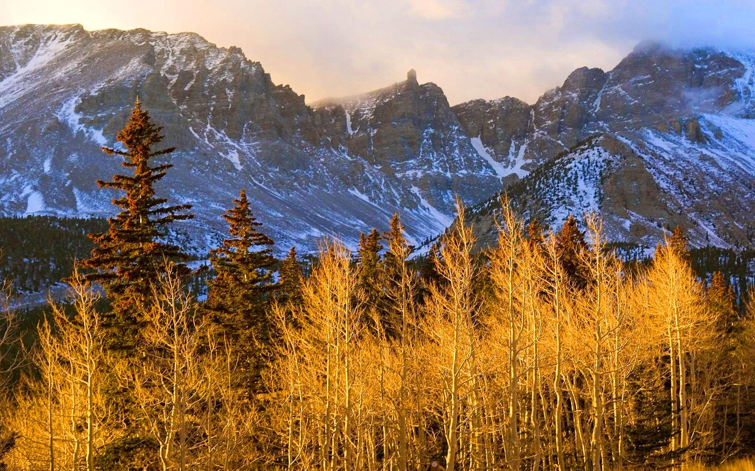 Wheeler Peak, Great Basin National Park, Nevada : Wallpapers13