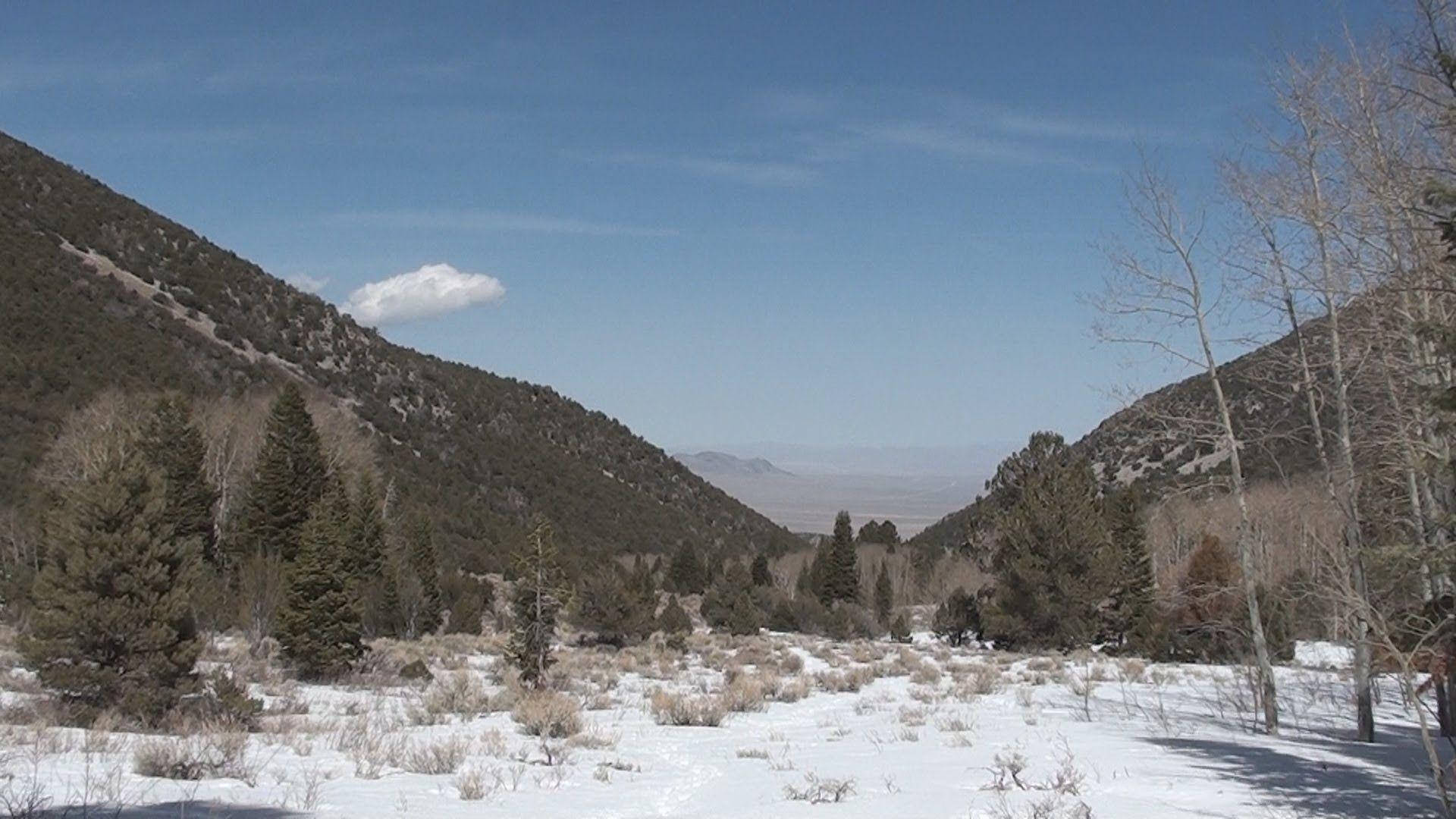 Great Basin National Park: Pole Canyon