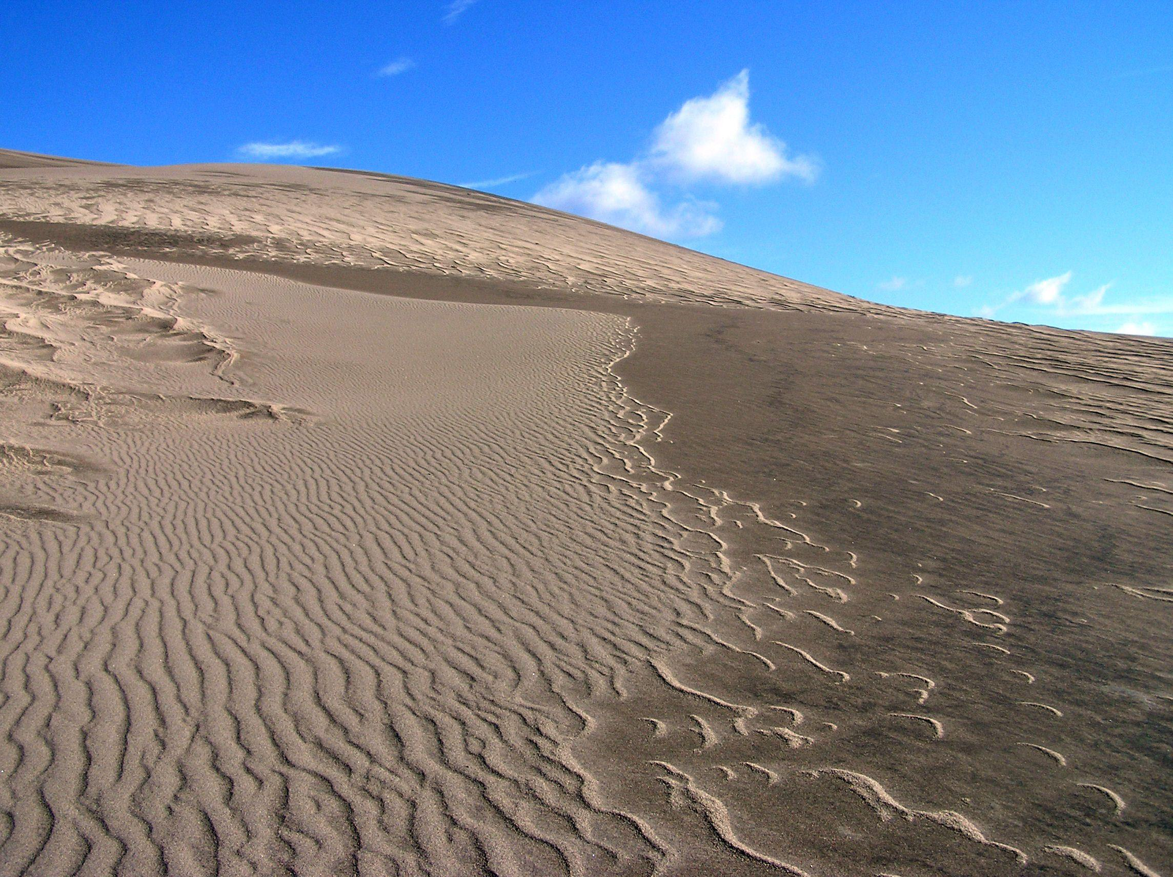 File:Great Sand Dunes National Park and Preserve P1012956.jpg