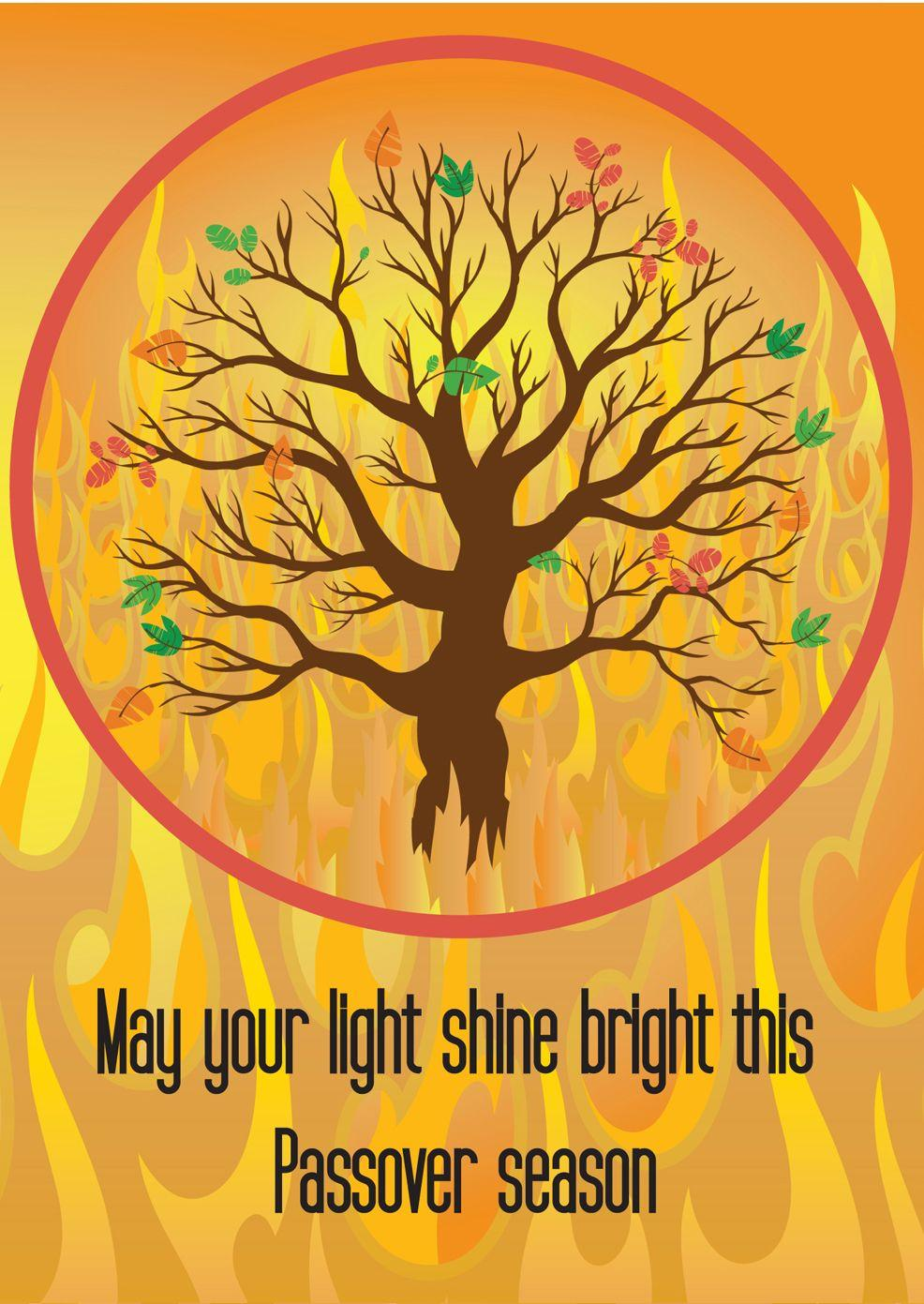Shine your Light! Passover.
